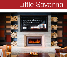 LittleSavanna_Thumb.jpg