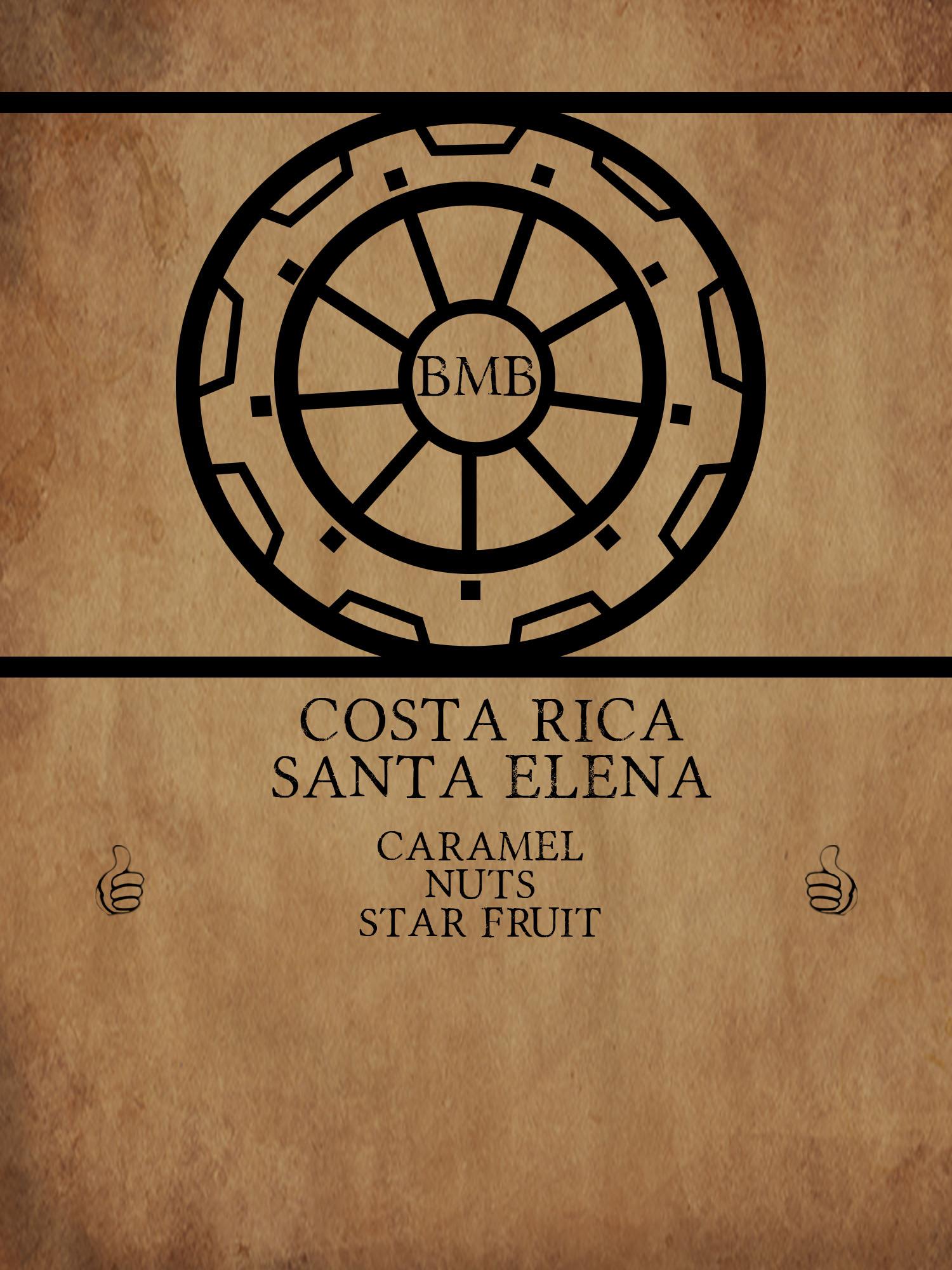 coffee_costa_rica_Santa Elena_apoclypse_gift.jpg