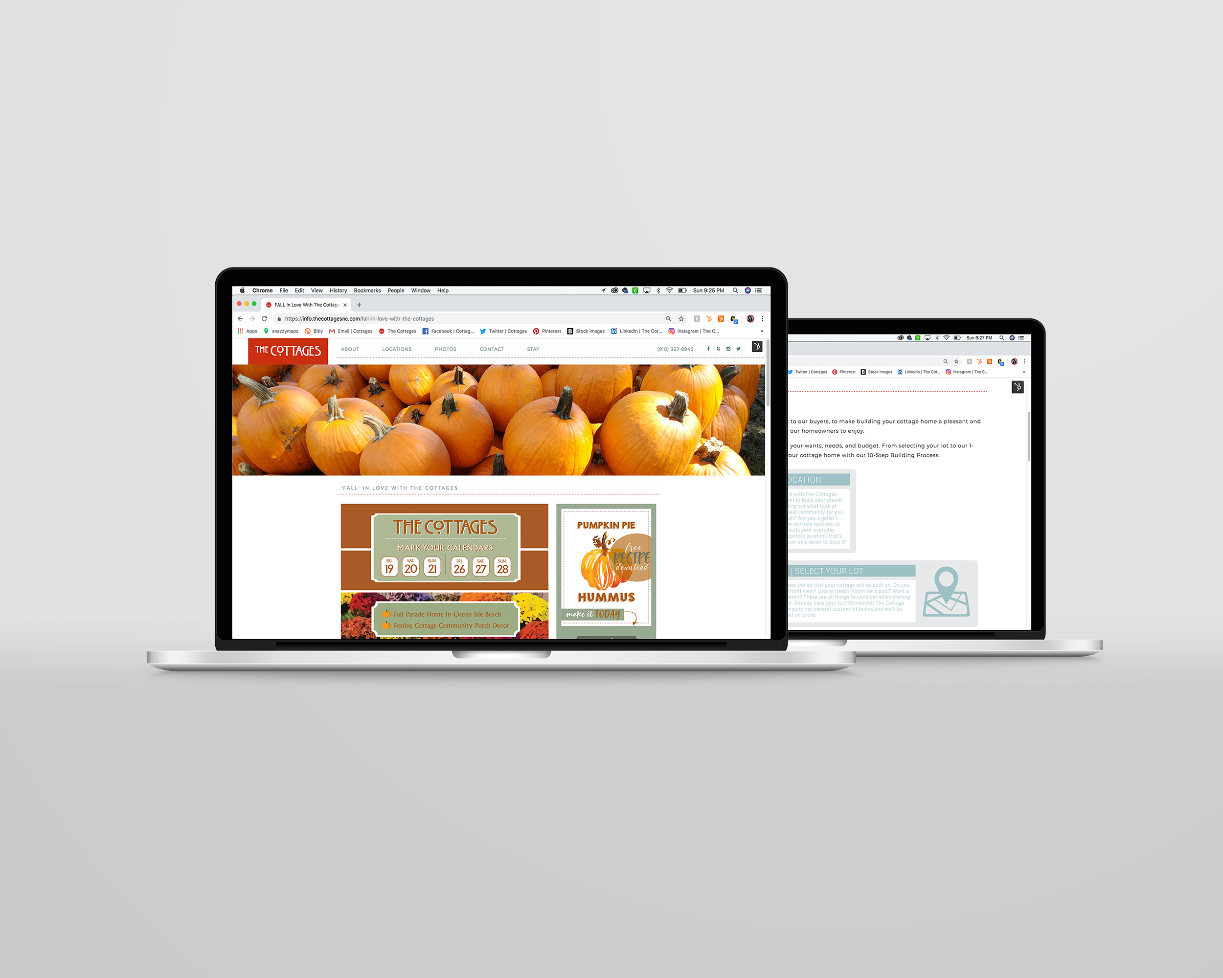 FALL CAMPAIGN LANDING PAGE + COMPANY WEBSITE LANDING PAGE
