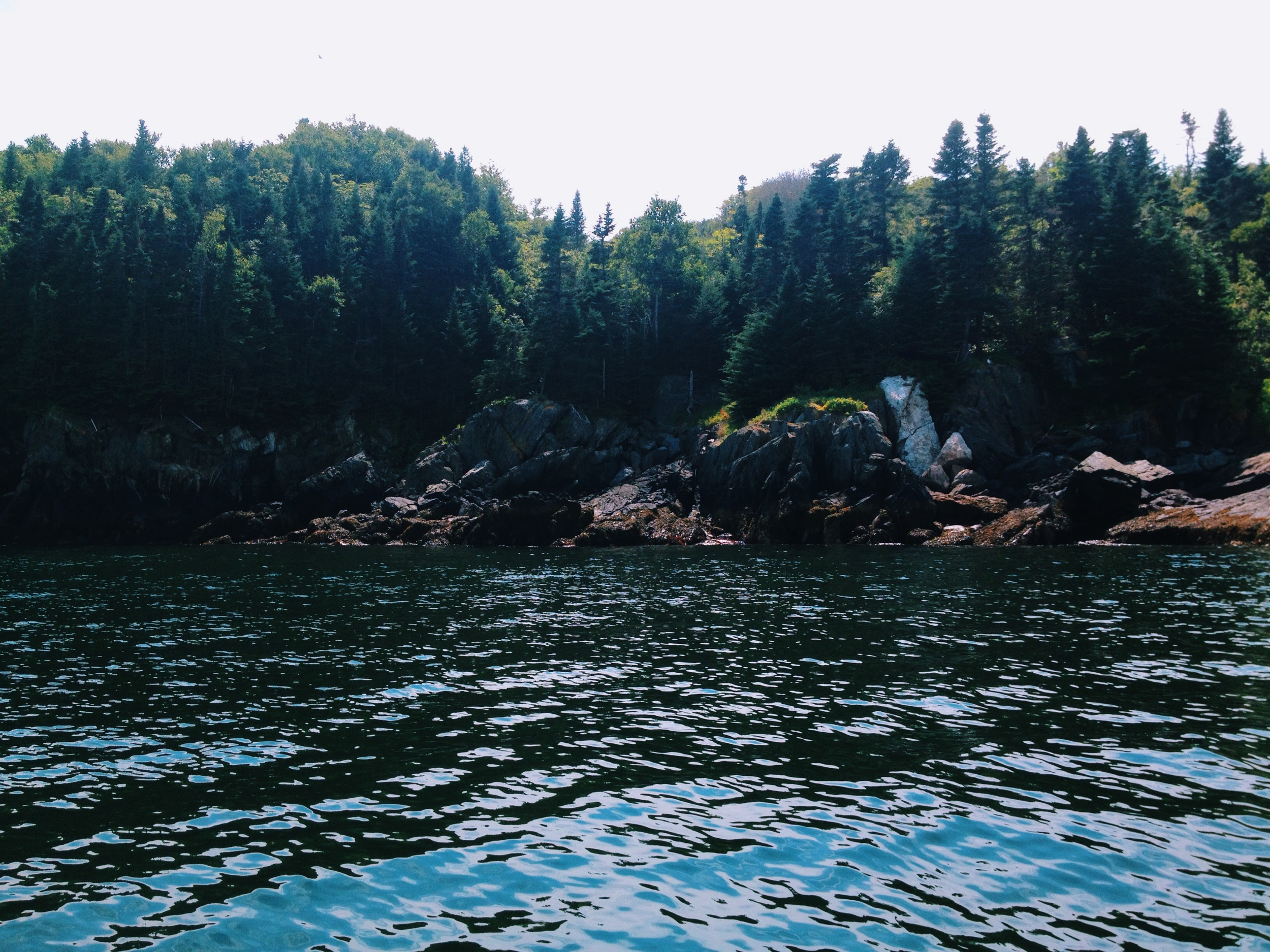 Off the Beaten Path In Maine - Seguin Island 4 photo taken by Michelle Kinerson of Cape Porpoise Trading Co.JPG