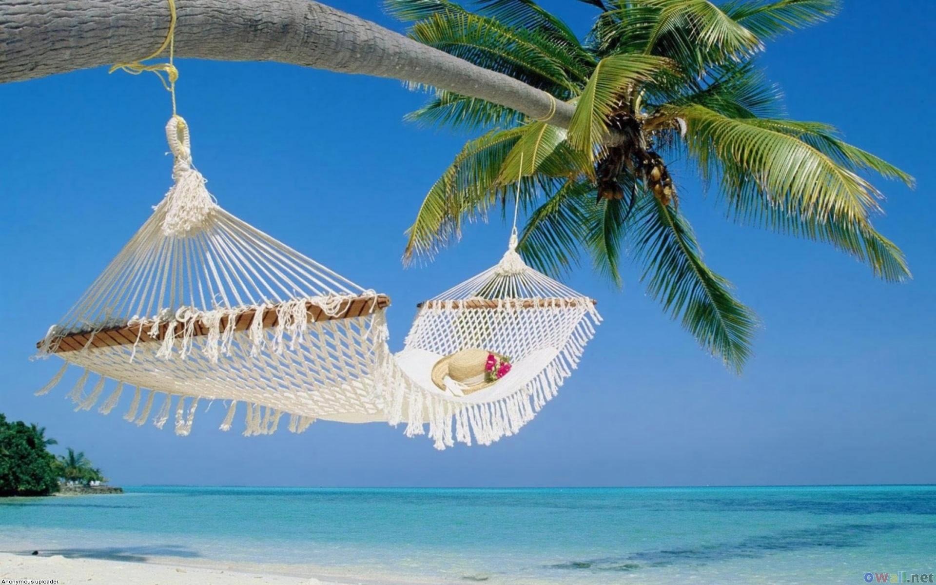 Beachhammock.jpg