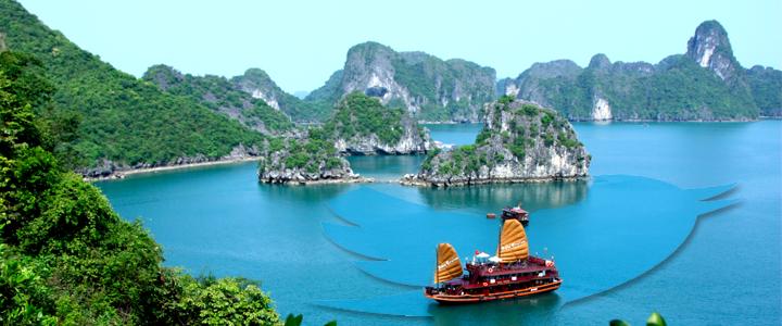 twitter-blocked-vietnam.png