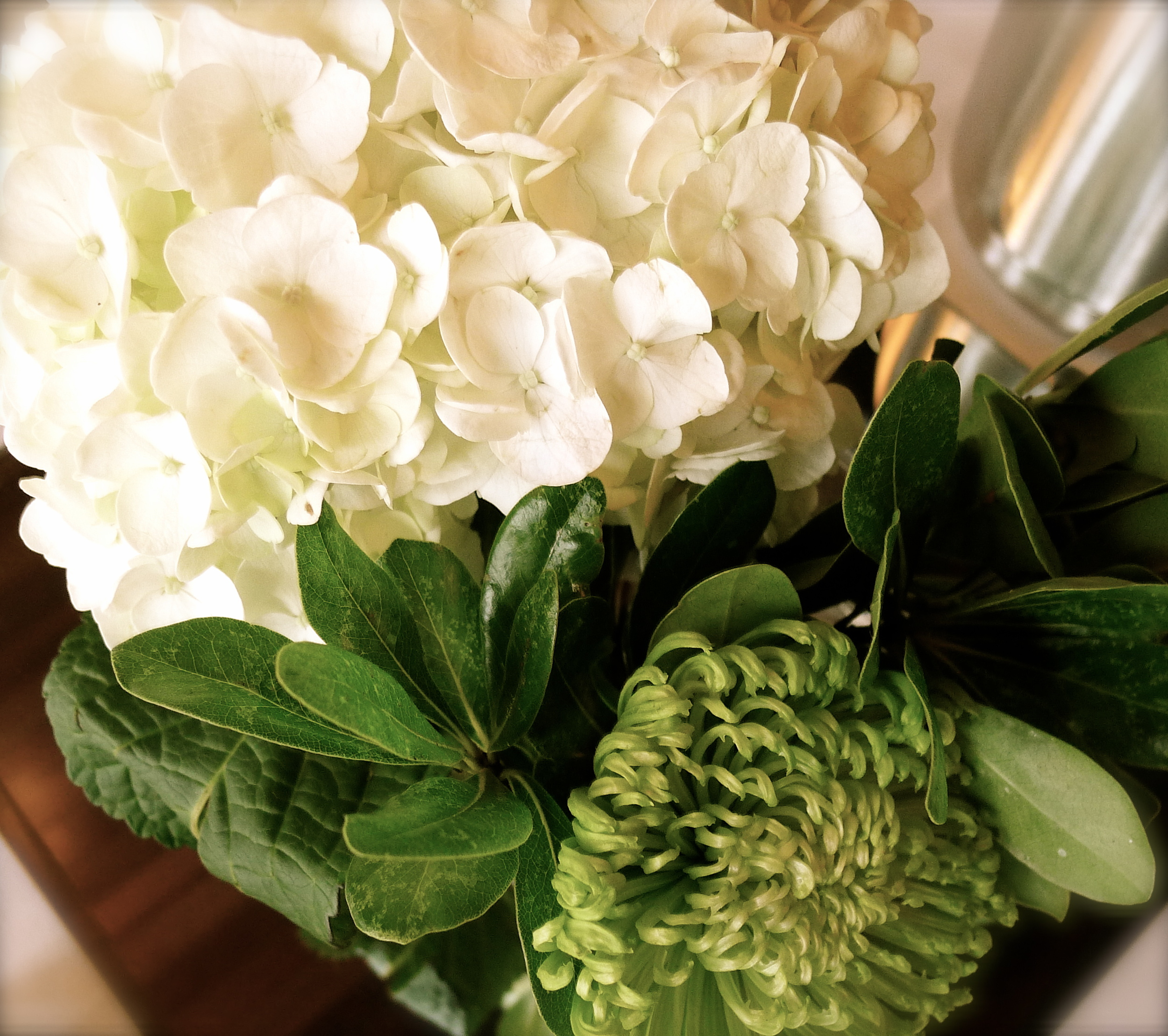 HYDRANGEAS ARE MY ABSOLUTE FAVORITE AND THESE ARE FROM MARI'S GARDEN. SO PRETTY.
