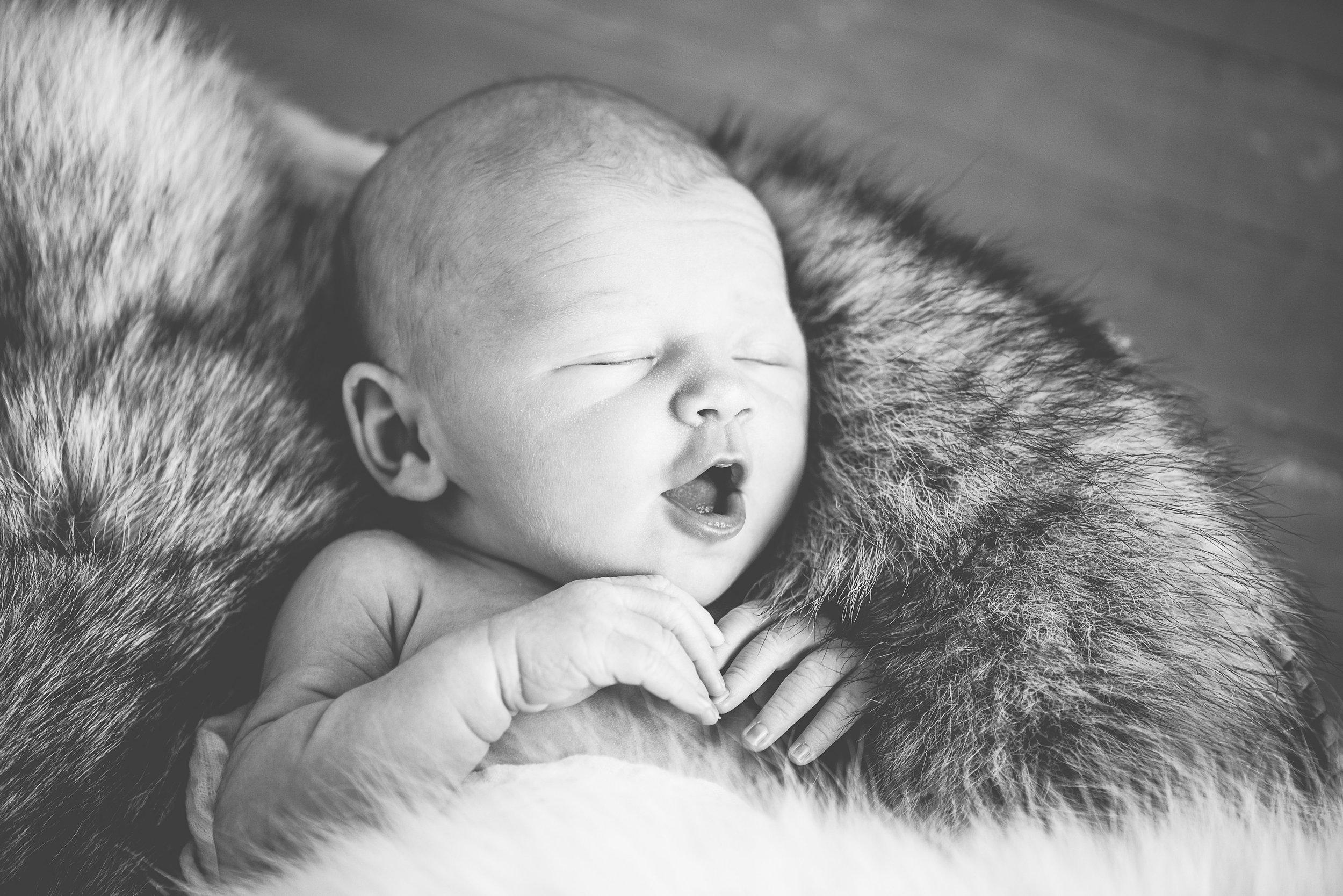 kladder newborn-kladder newborn-0036.jpg