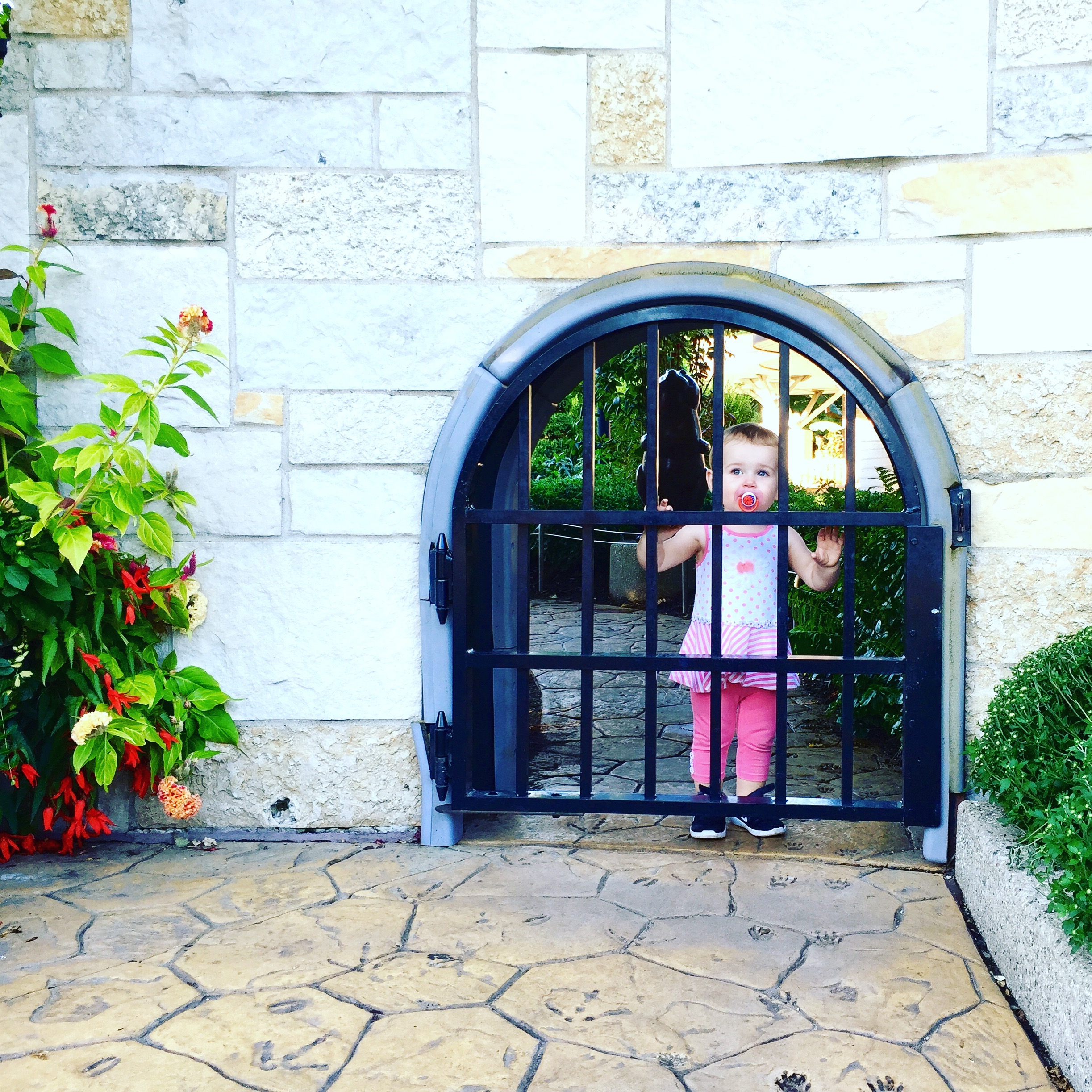 The mini entryway to the Children's Garden at FMGs.