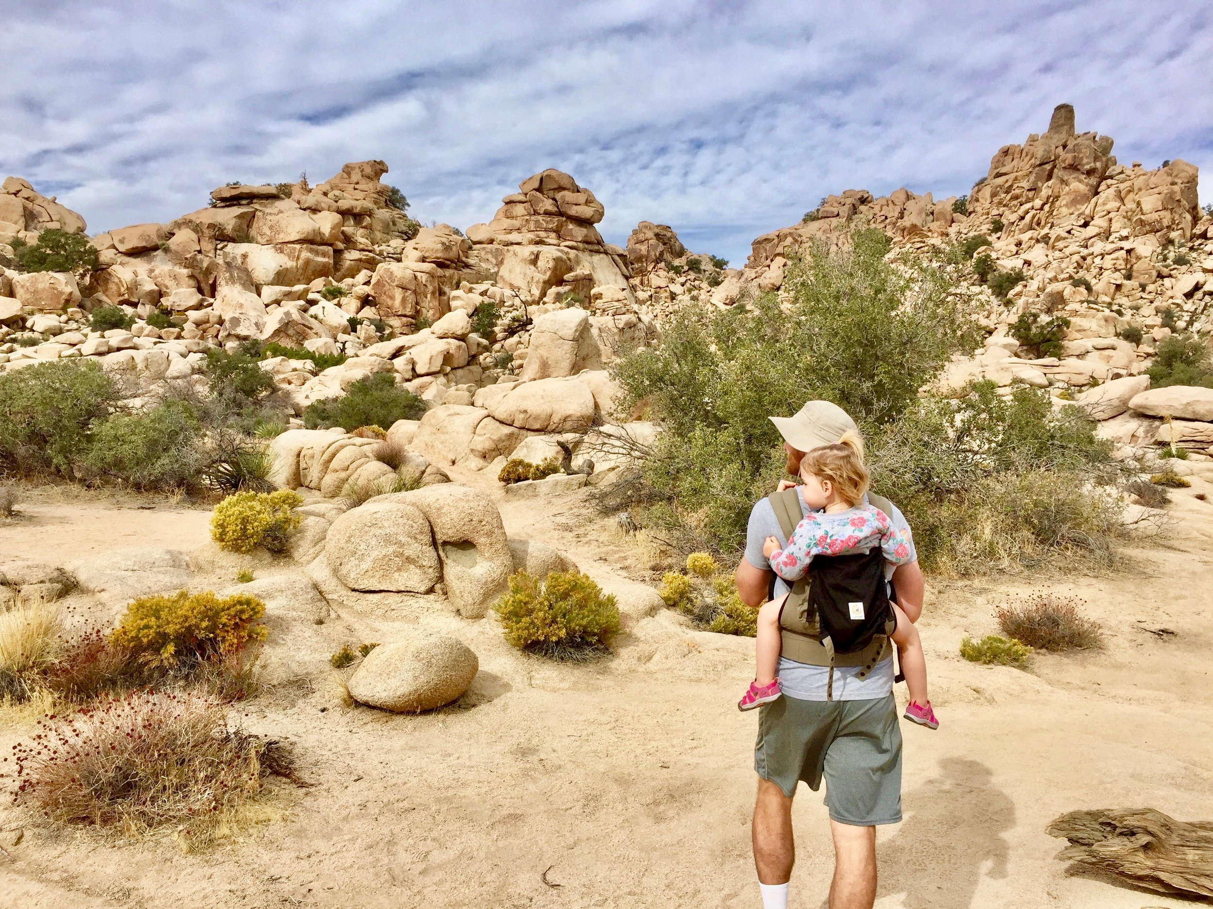 Joshua Tree Family Vacation 2.jpg