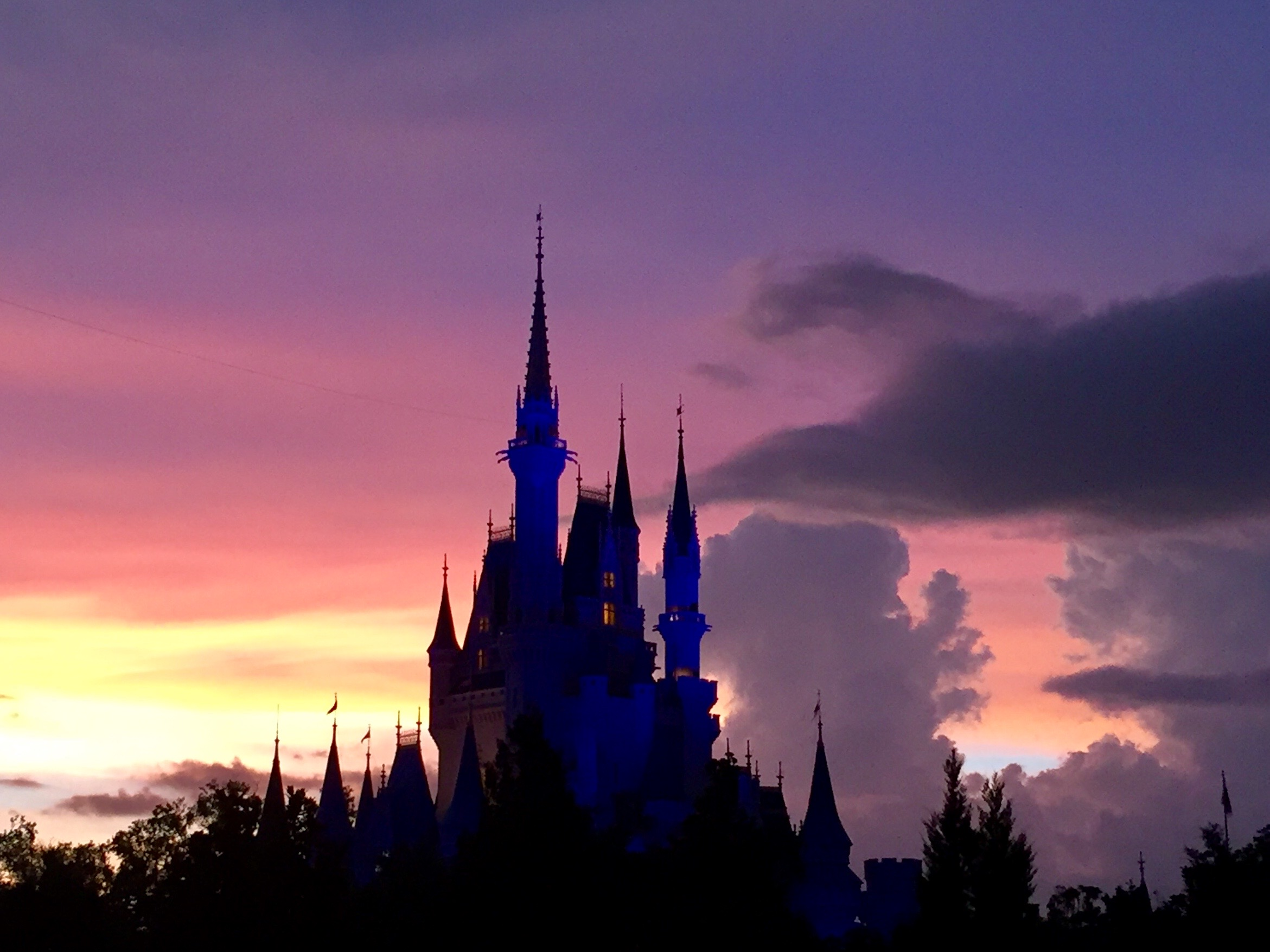 Disney World Castle Pic.jpg