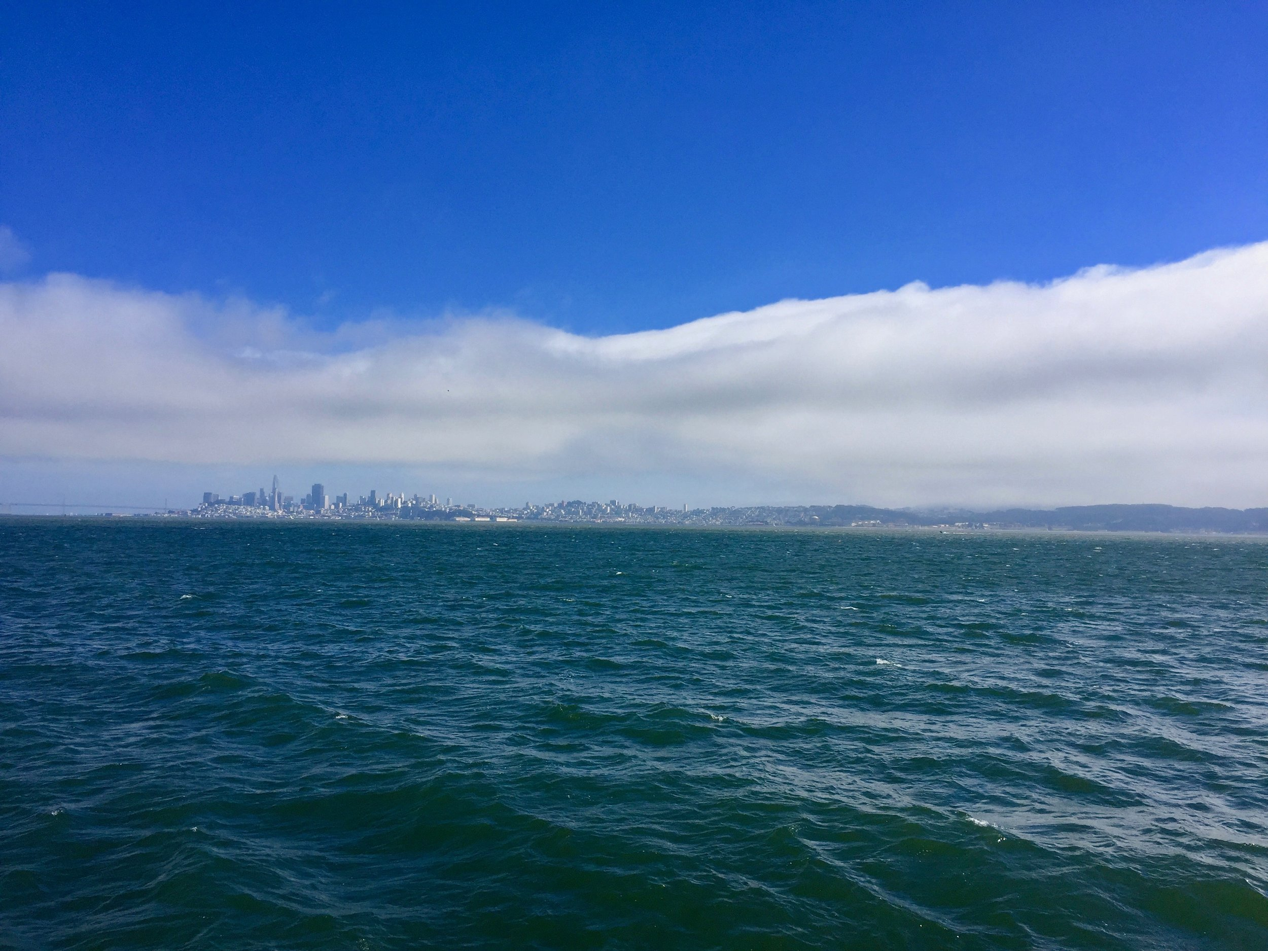 San Francisco Cityscape.jpg