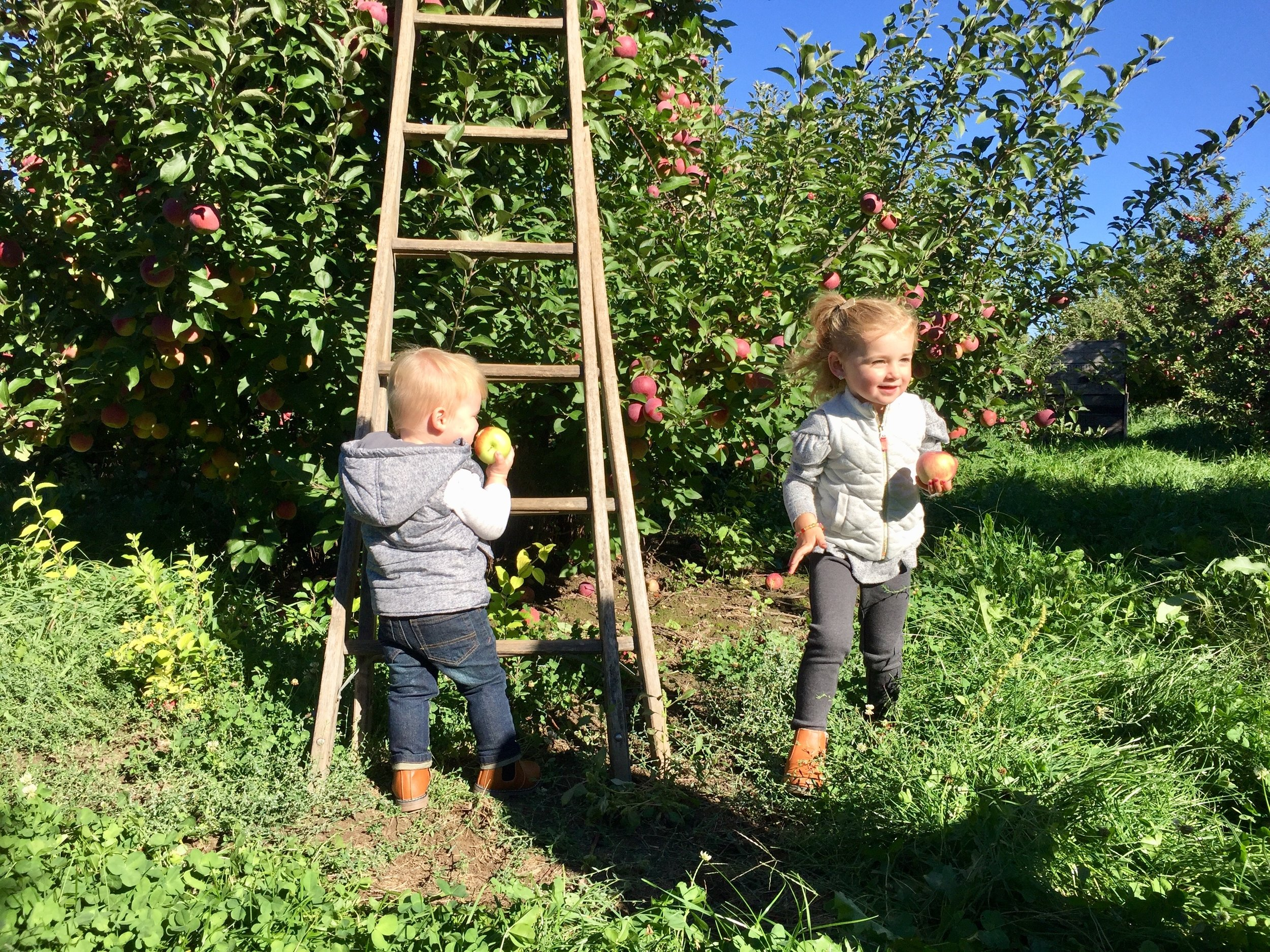 Klackle Orchards Kids.jpg