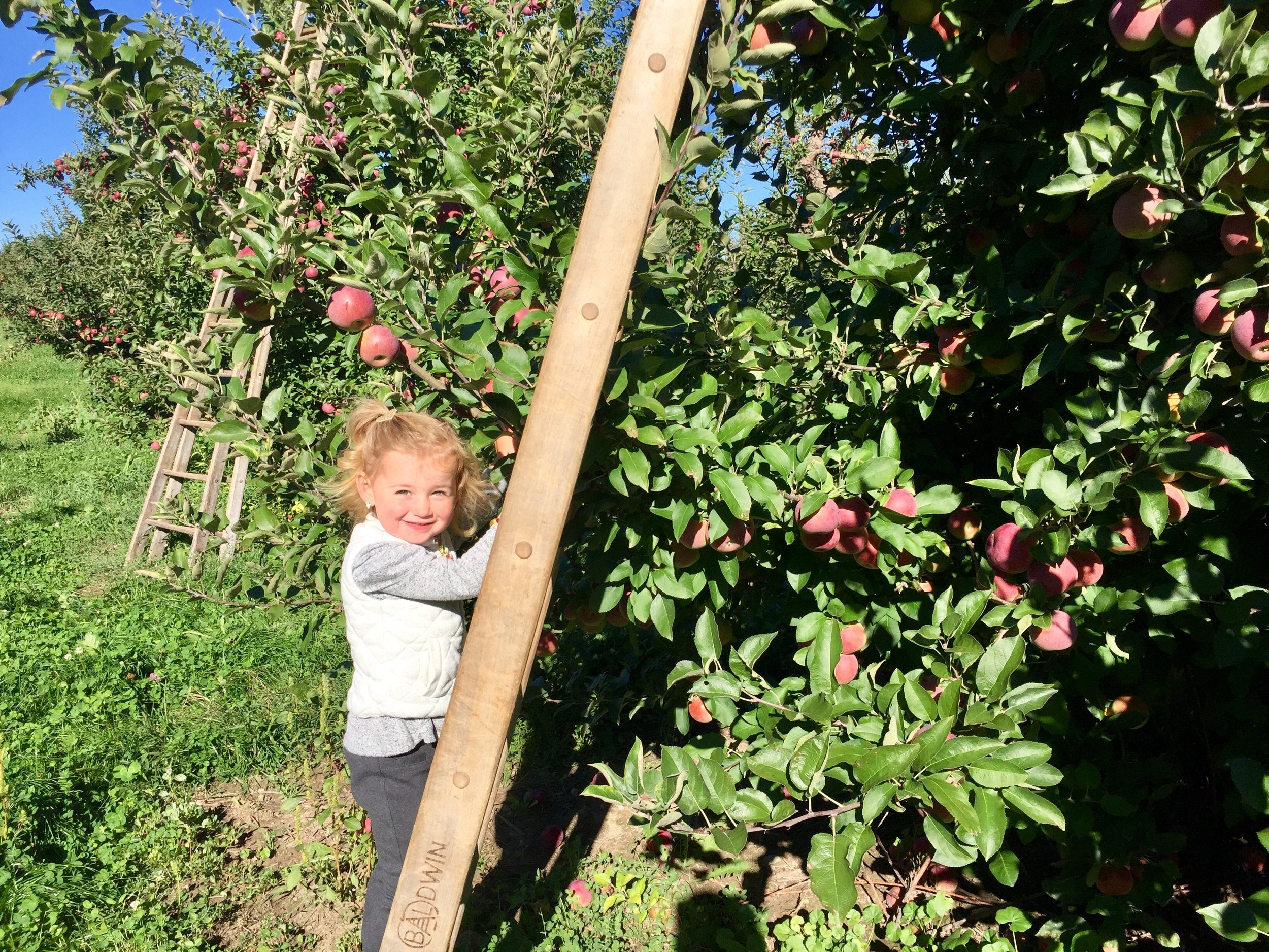 Klackle Orchards Natalie.jpg