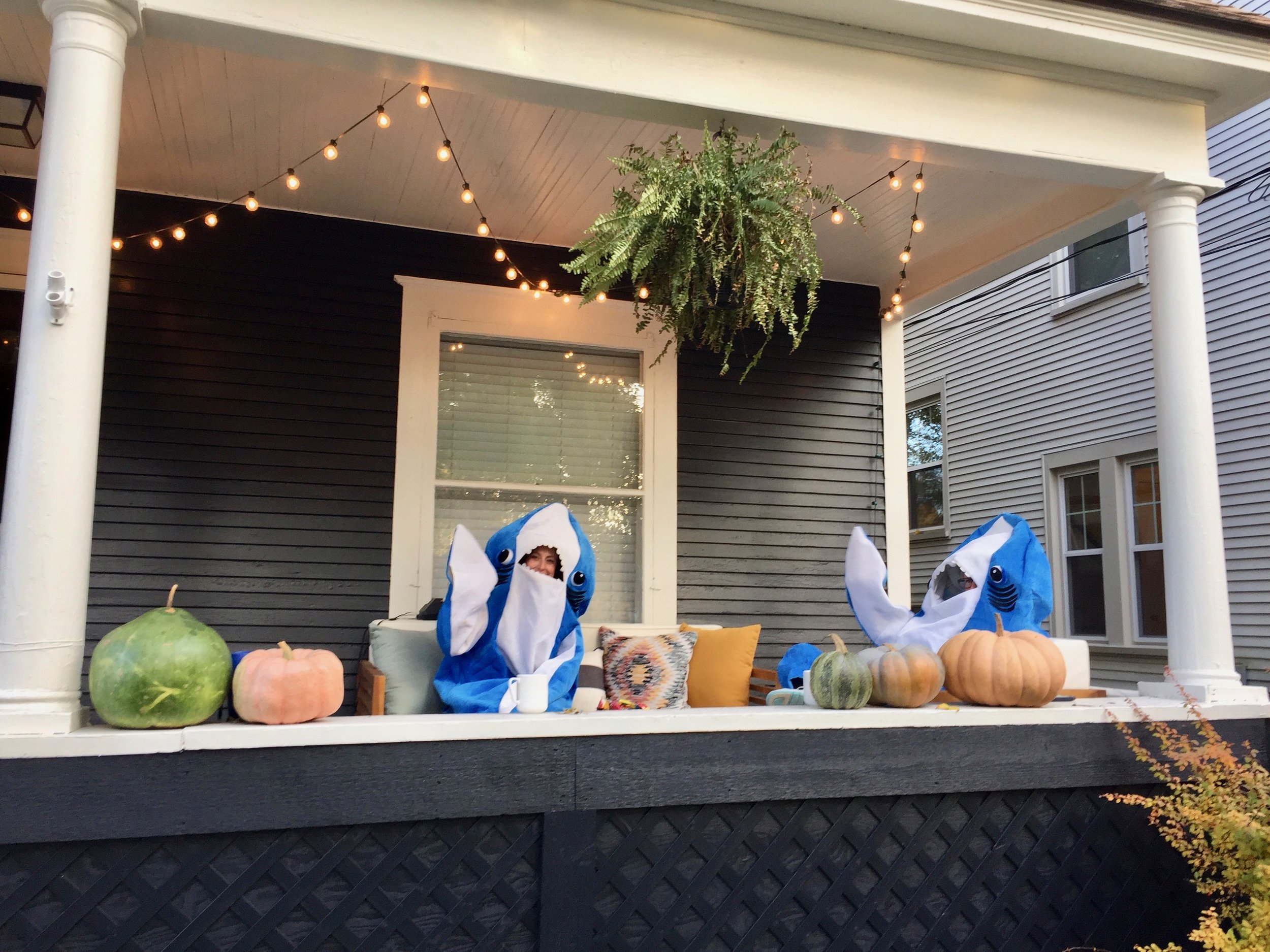 Halloween on Rosewood Sharks.jpg