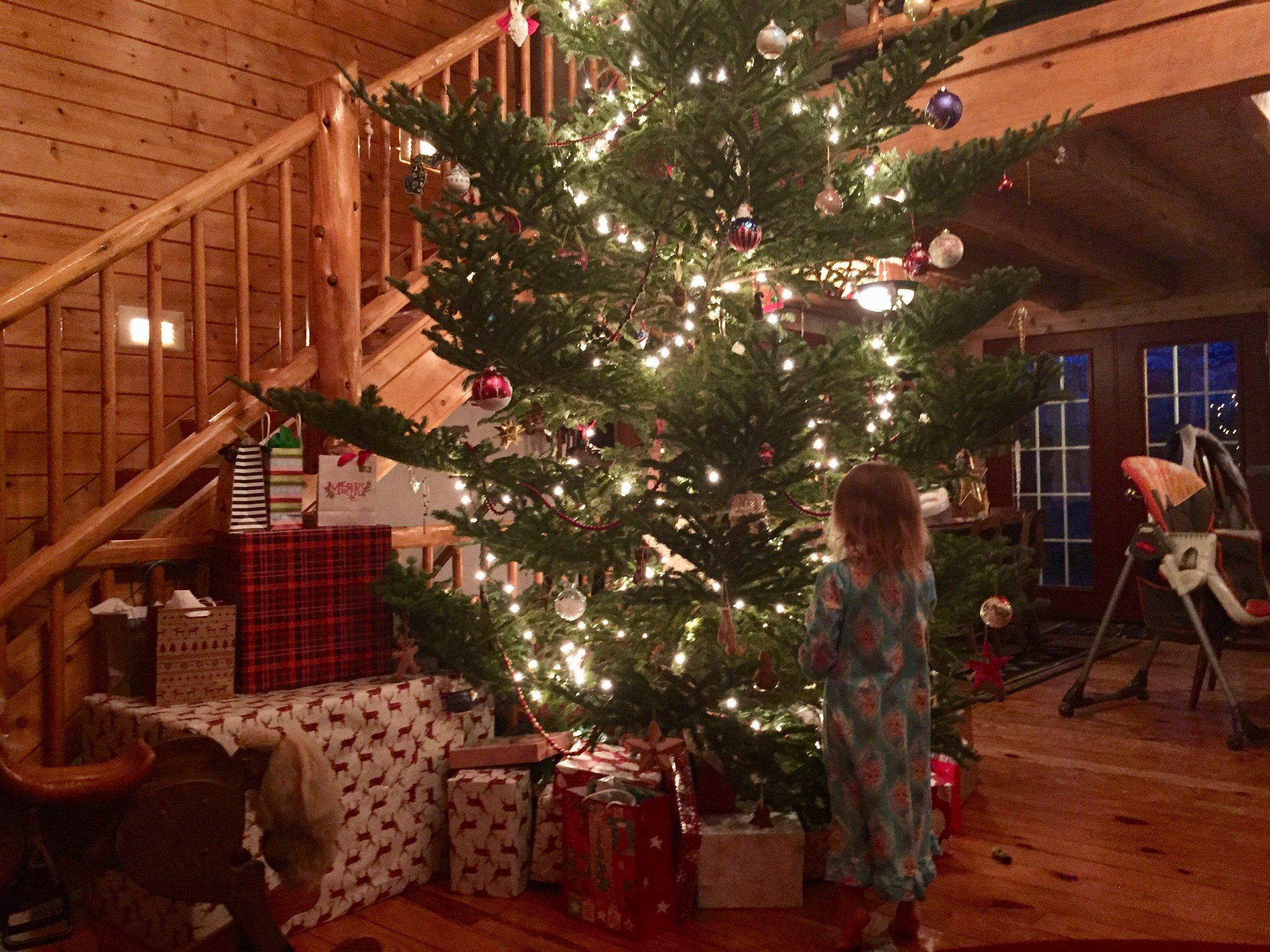 smith christmas tree.jpg