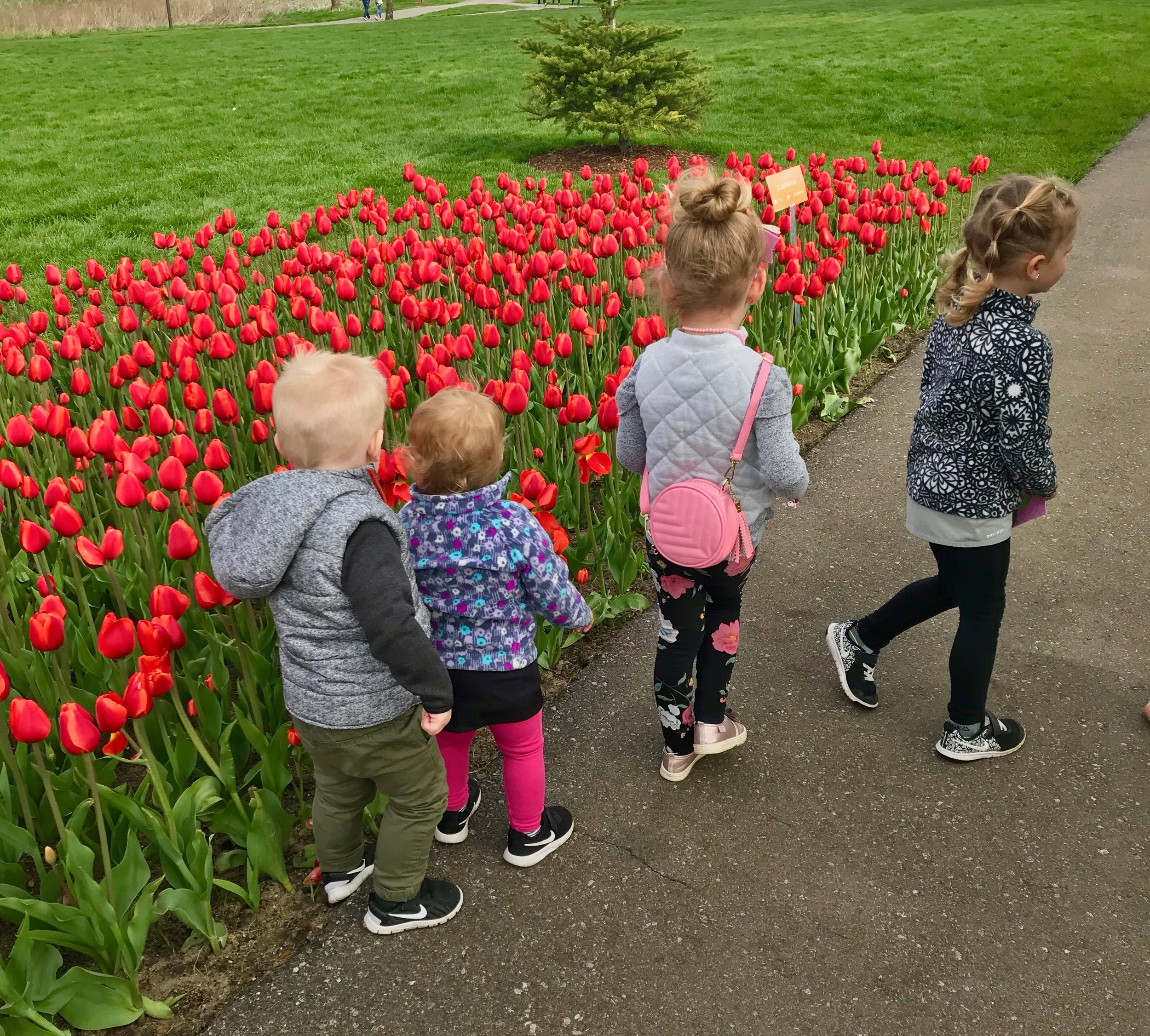 Tulip Time Kids.jpeg