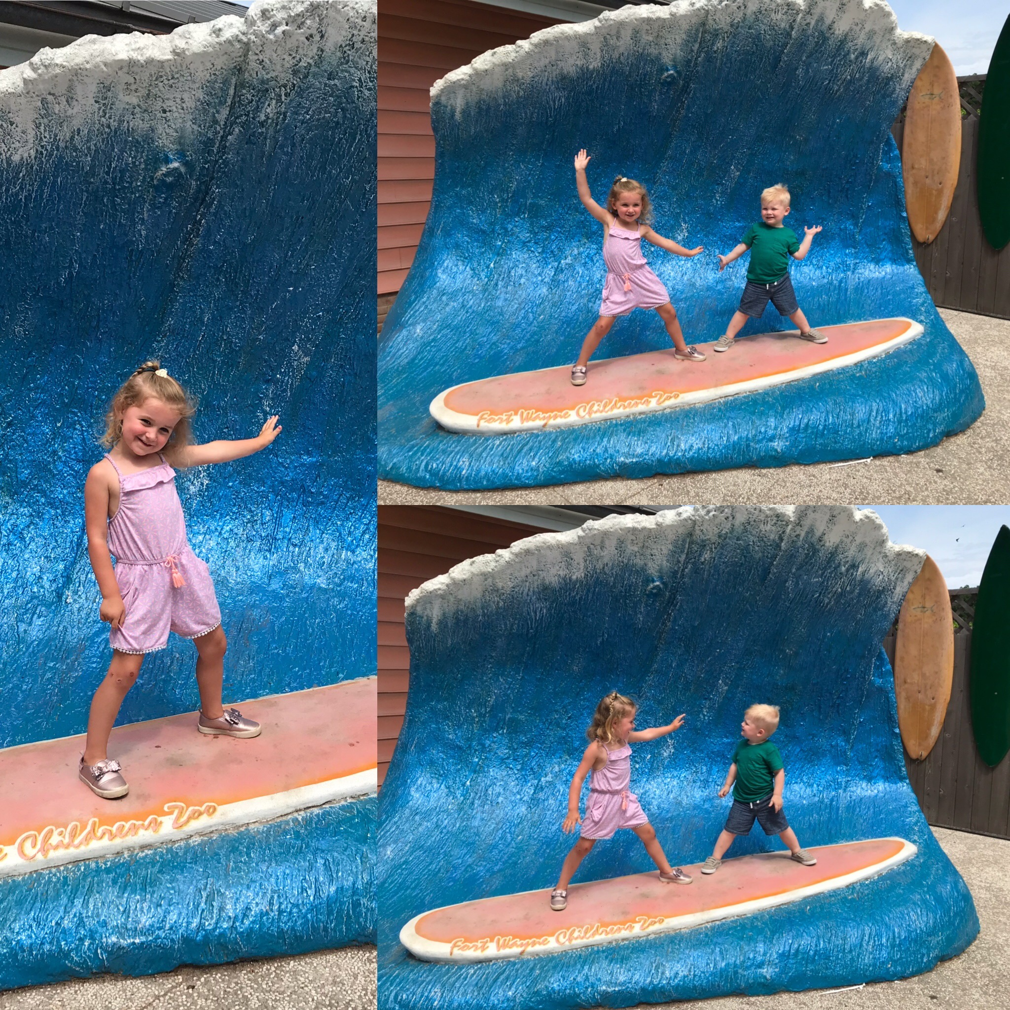 Fort Wayne Childrens Zoo surfing.jpeg