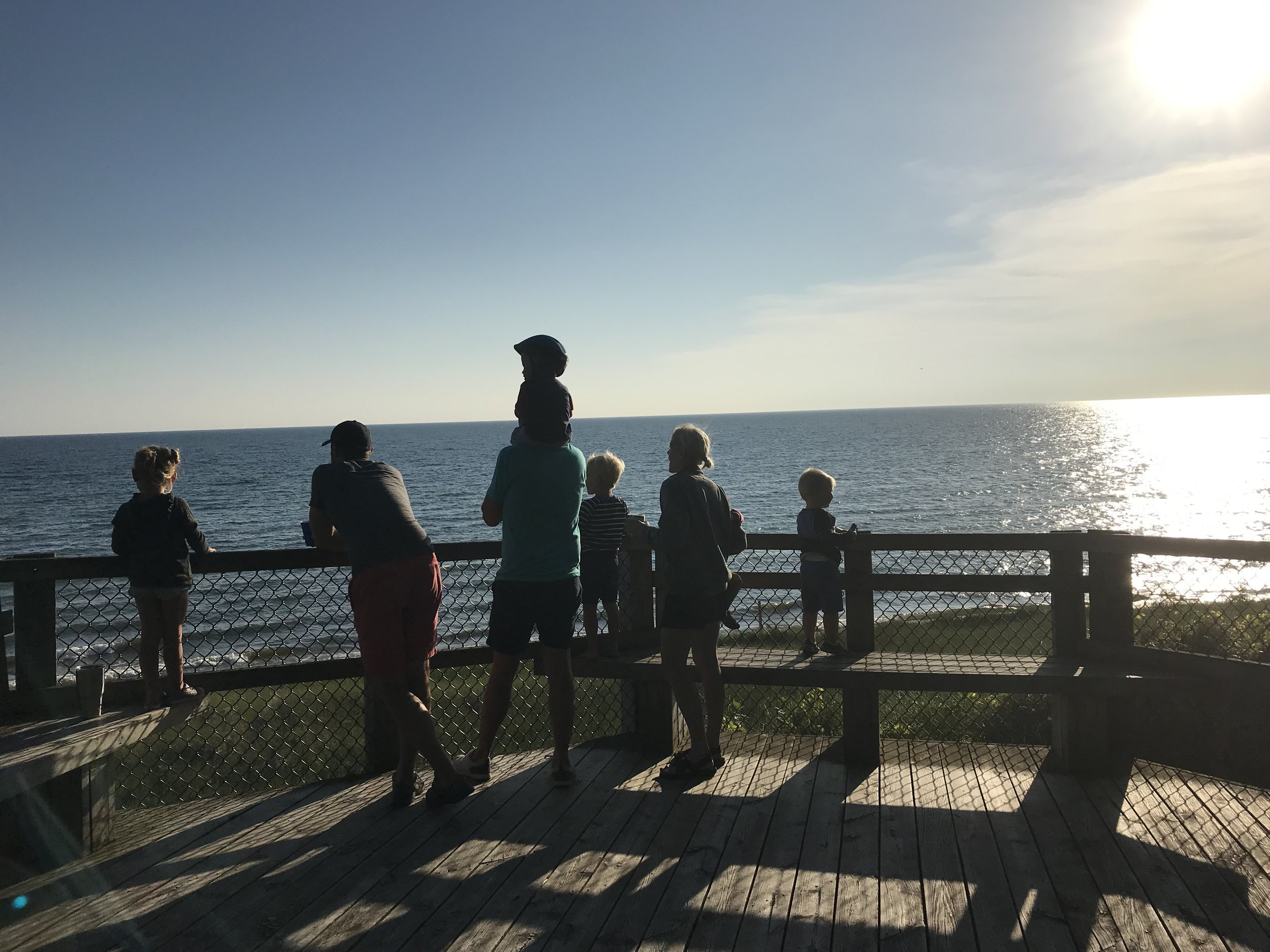 Lake Michigan overlook.jpeg