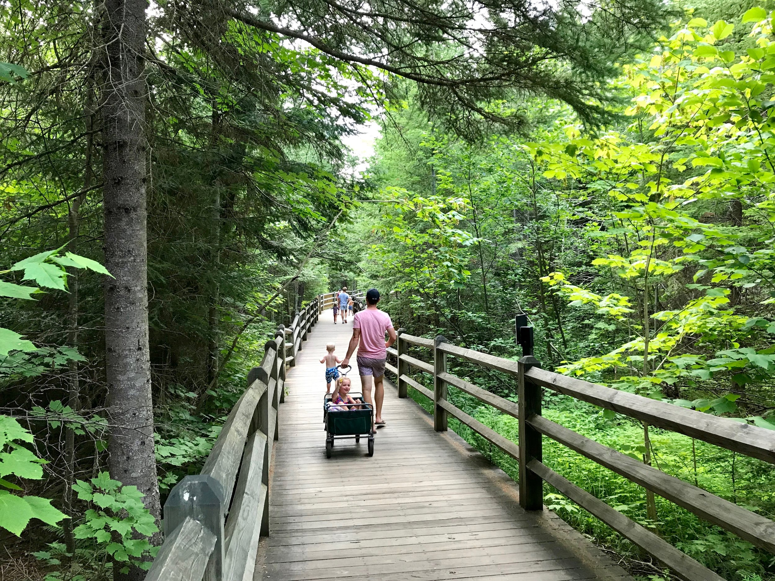 Tahquamenon lower falls board walk.jpeg