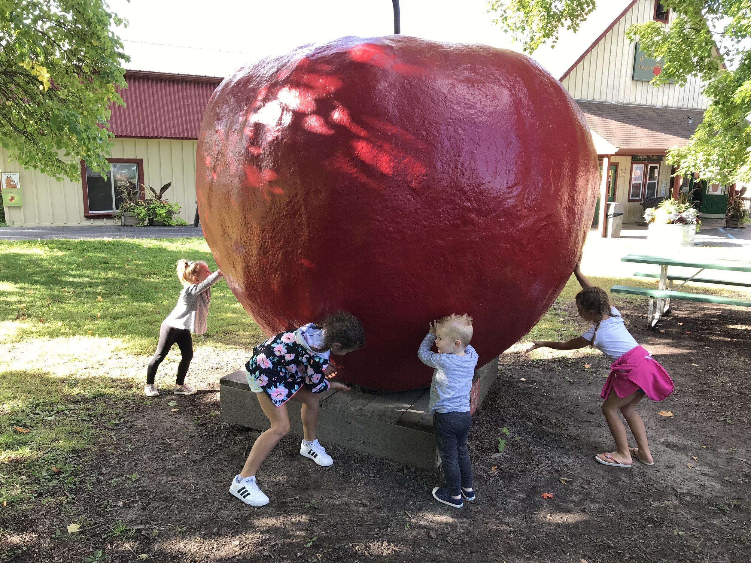 Robinettes Apple Orchard.jpeg