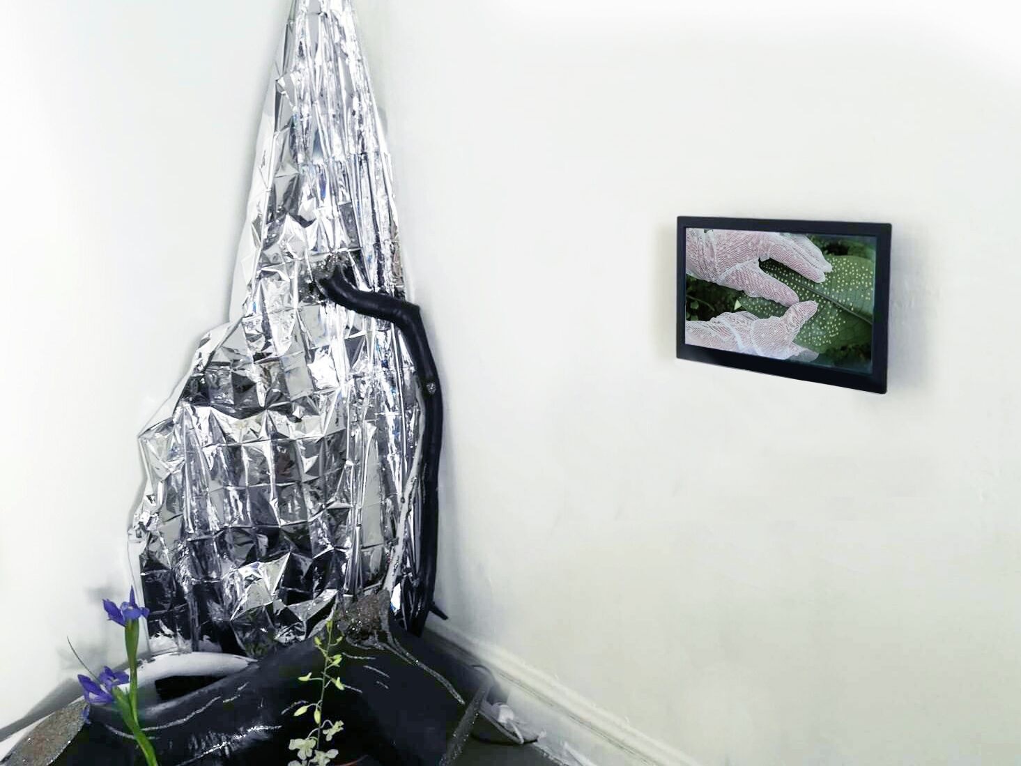 April Lynn (sculpture) + Marina Cavadini and Eva Maria Lourdes (video)_preview.jpg