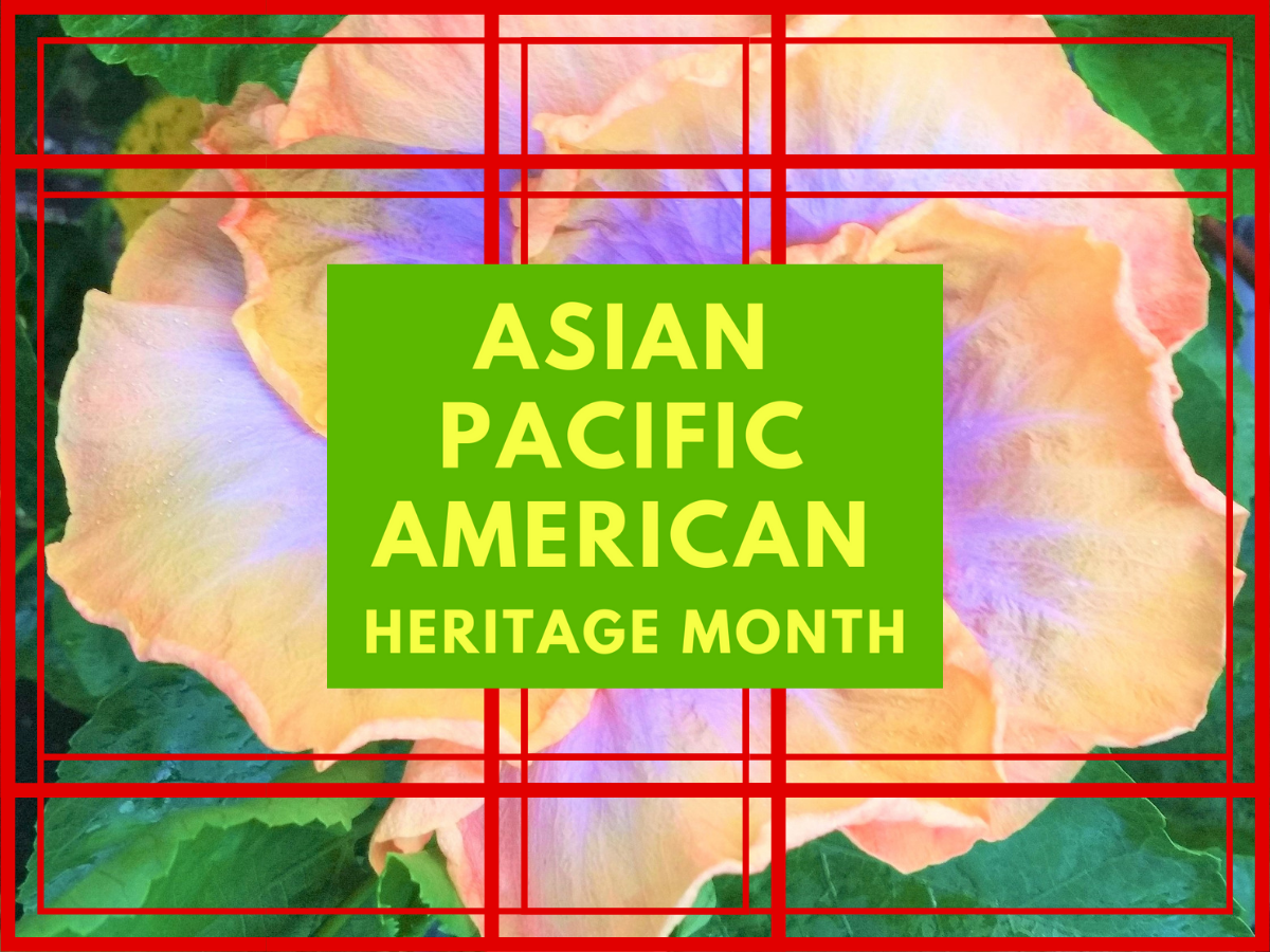 APA Heritage Month Banner Image 2.png