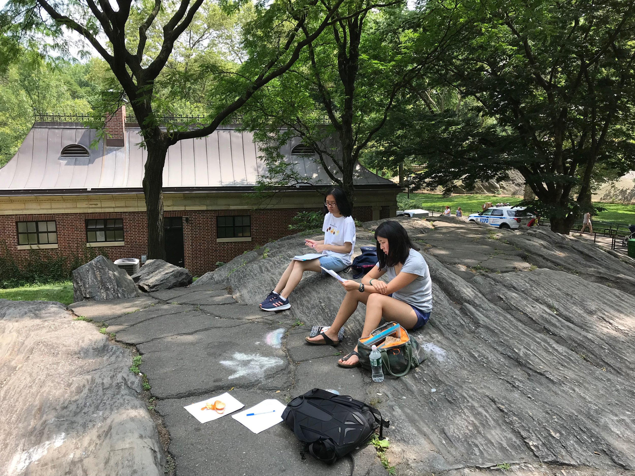 Olivia Hom and Sarah Huang write in Central Park.