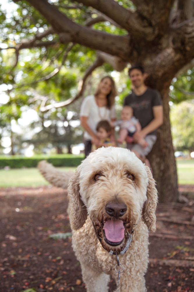 Anderson Family-14.jpg