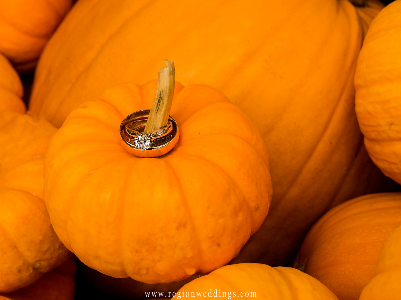 Wedding rings placed onto a stem of a bright orange pumpkin.