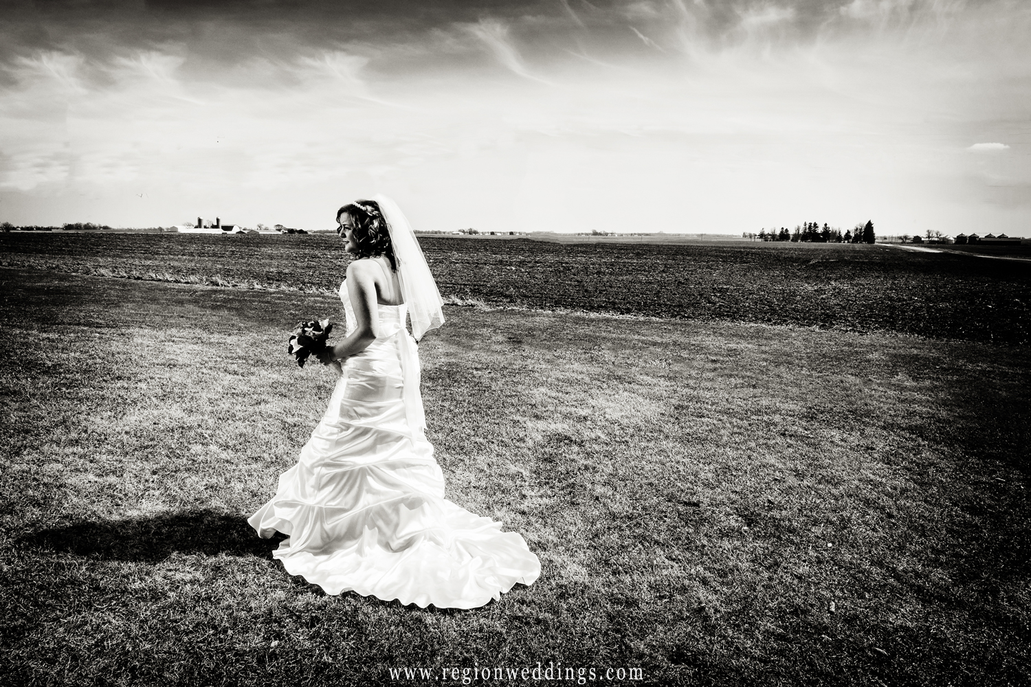 The bride looks off in the distance surrounded by Illinois farmland.