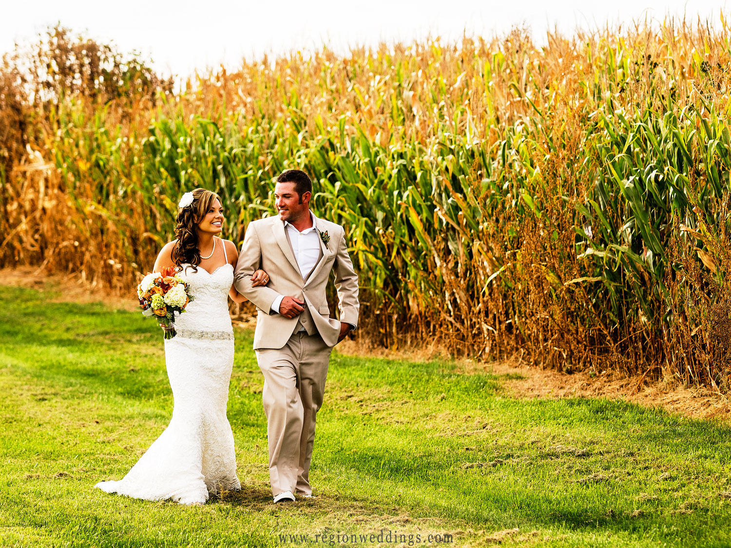 The bride and groom walk amongst the Indiana corn.