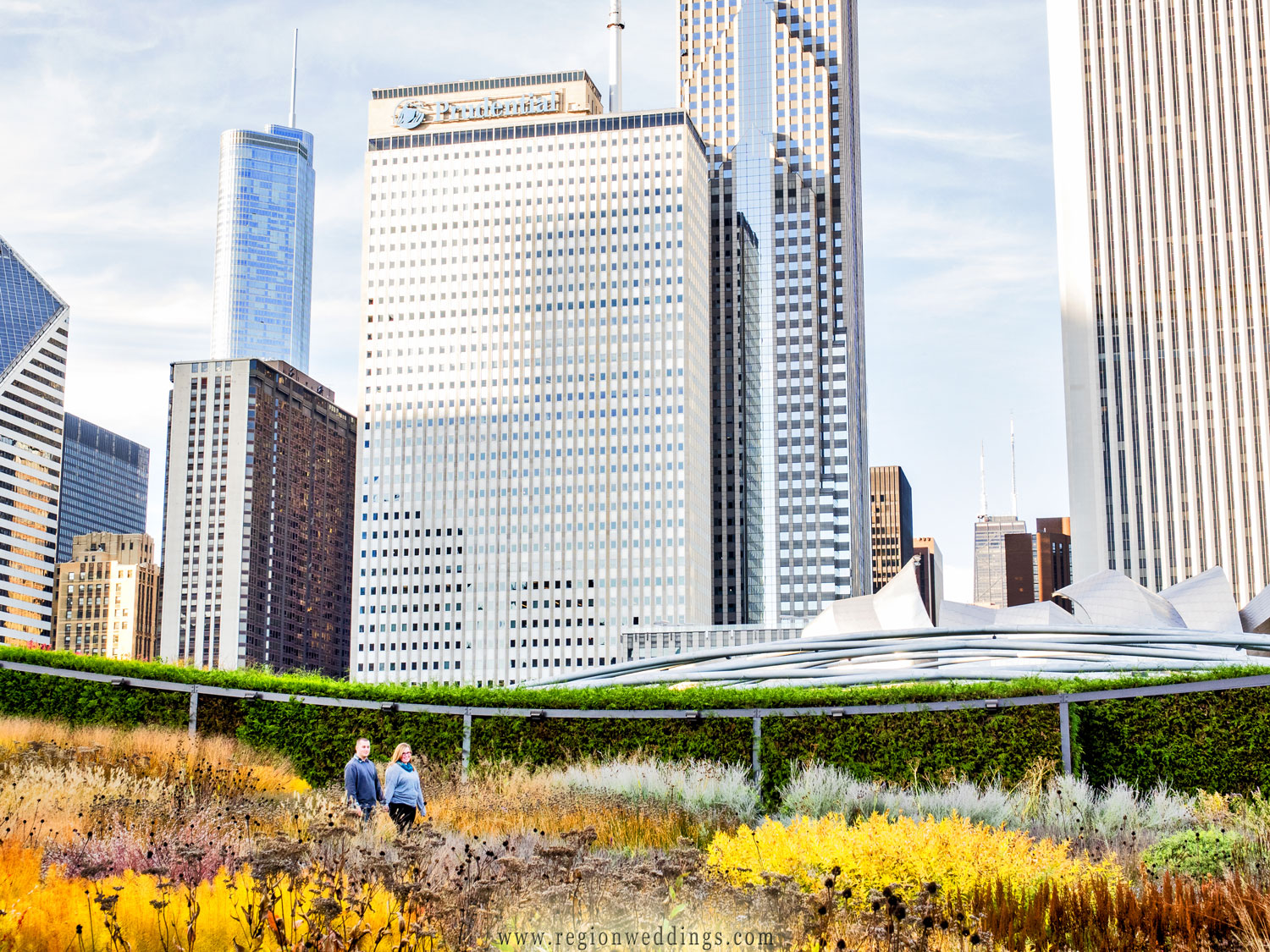 City skyscrapers as seen from the Millennium Gardens in this Chicago engagement photo.