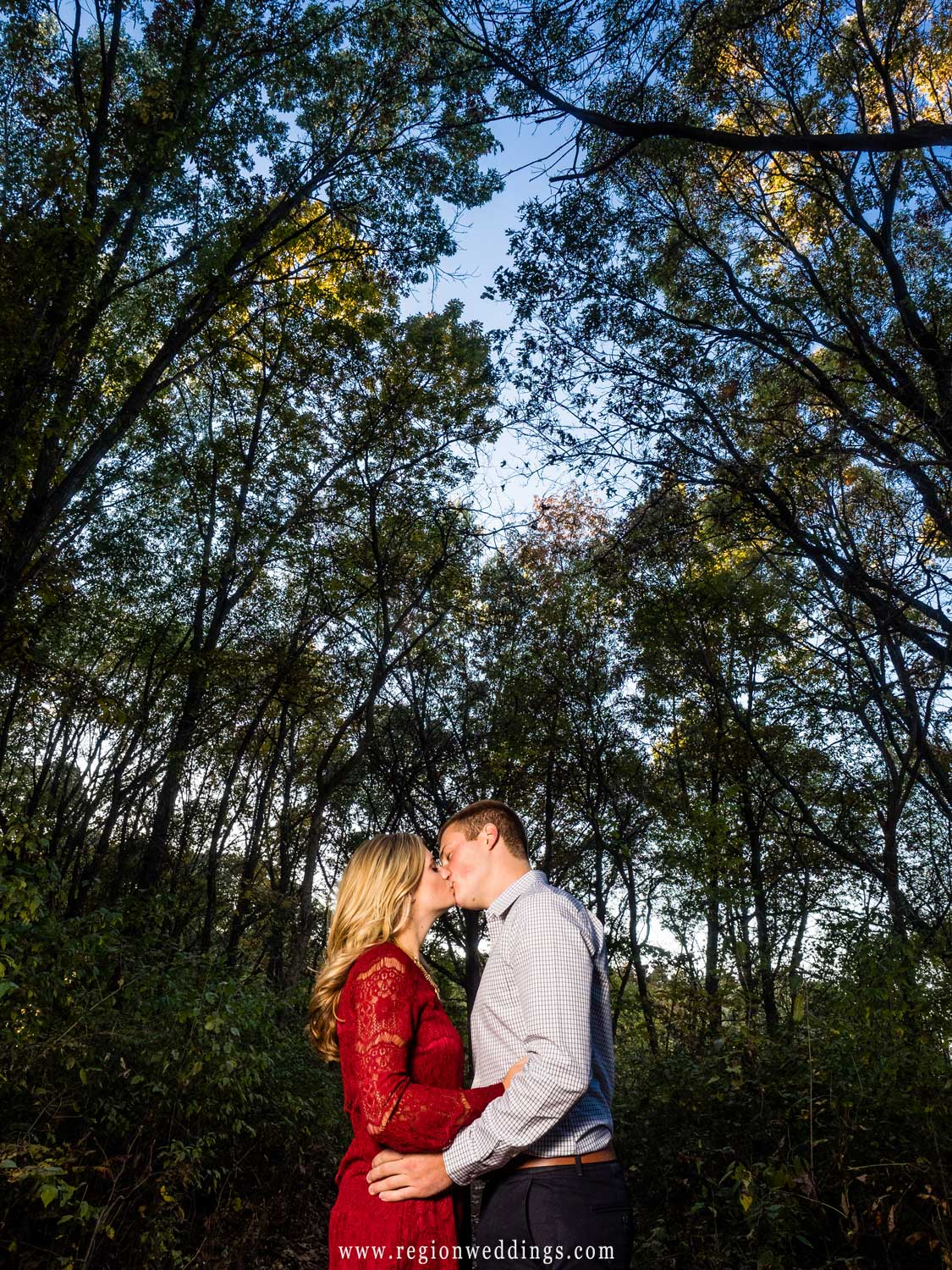 A kiss underneath the the tall trees of Taltree Arboretum.