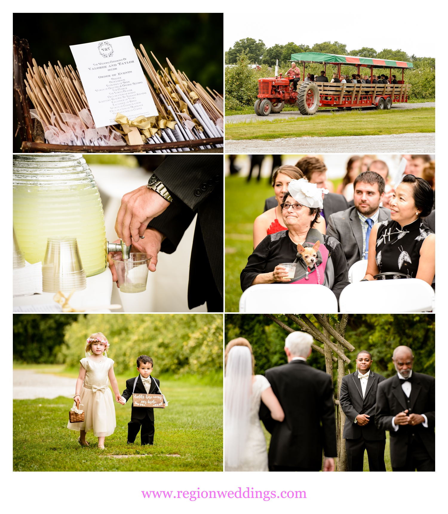Wedding ceremony moments at County Line Orchard.