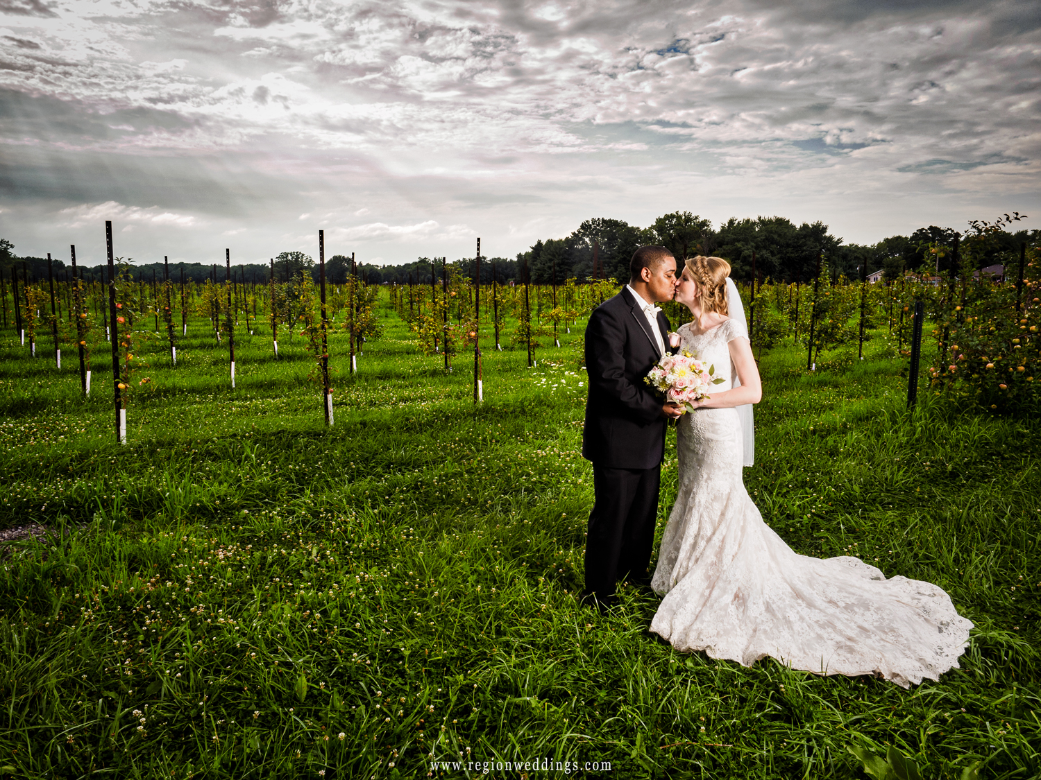 A newly married couple kisses in the apple fields of County Line Orchard in Hobart, Indiana.