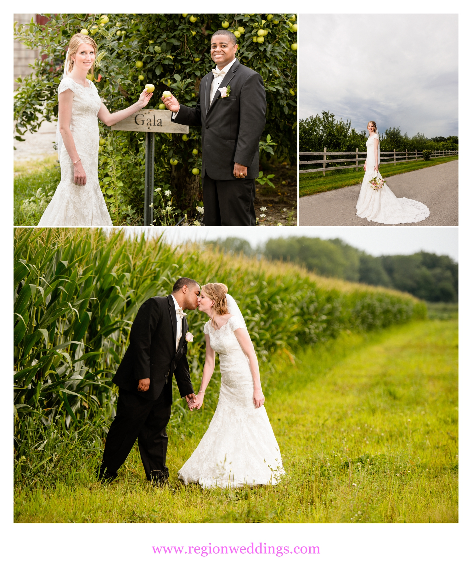 Wedding photos at County Line Orchard.