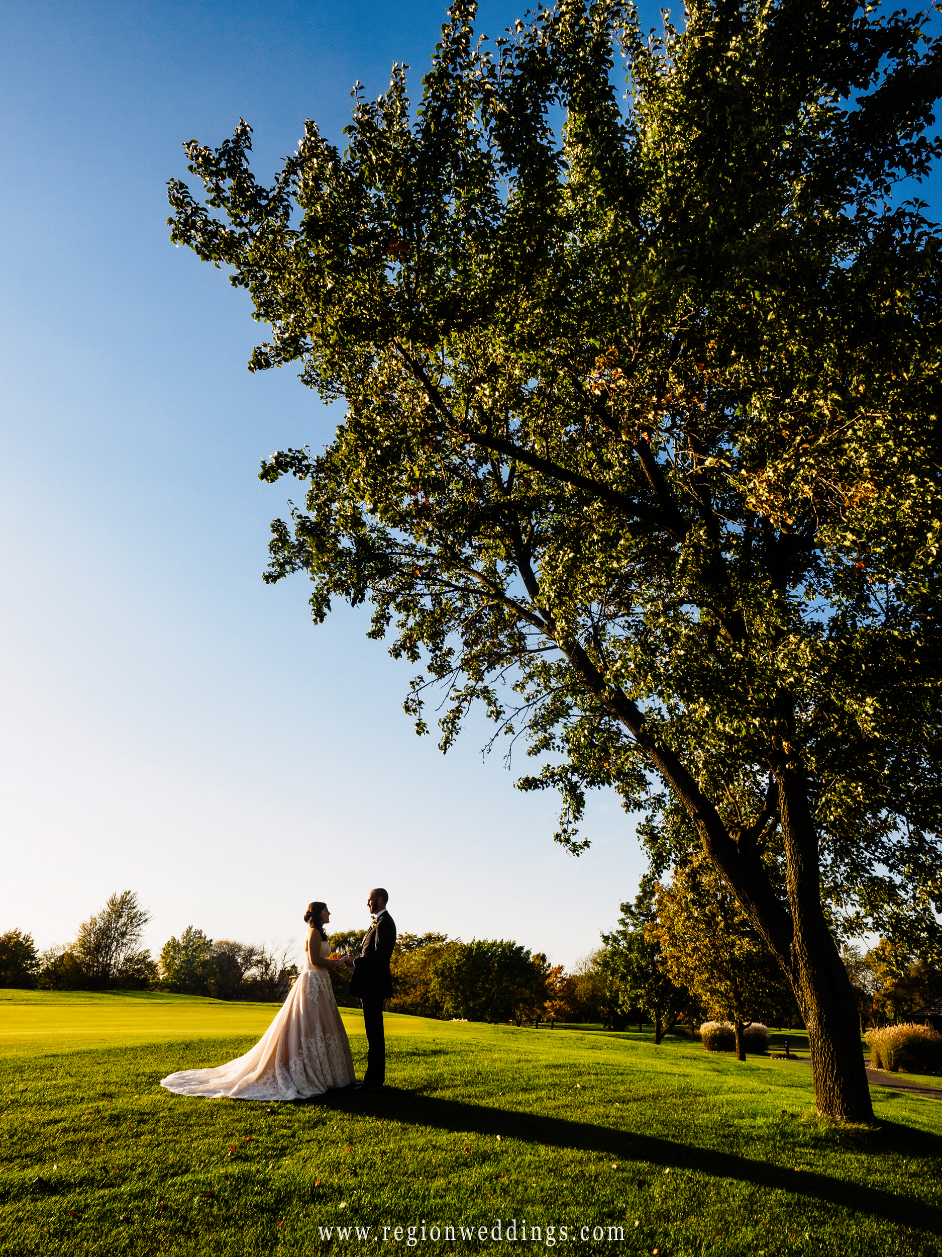 The bride groom hold hands in the shade of a large tree at Briar Ridge Country Club.
