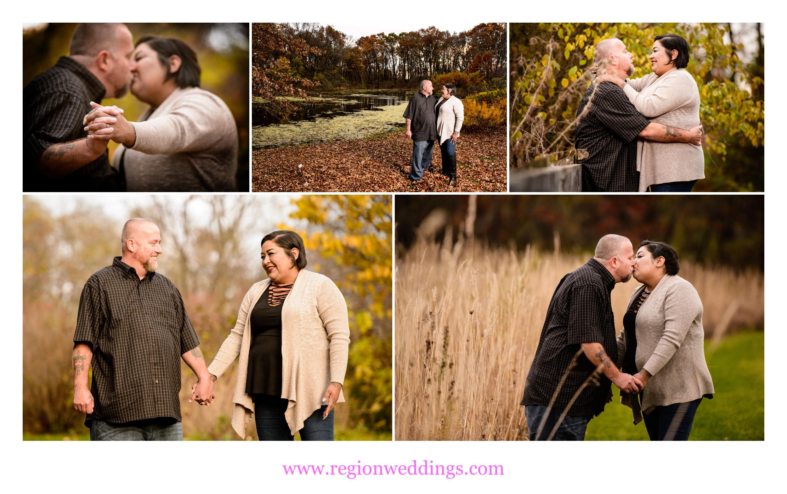 Fall engagement photos at Taltree Arboretum.
