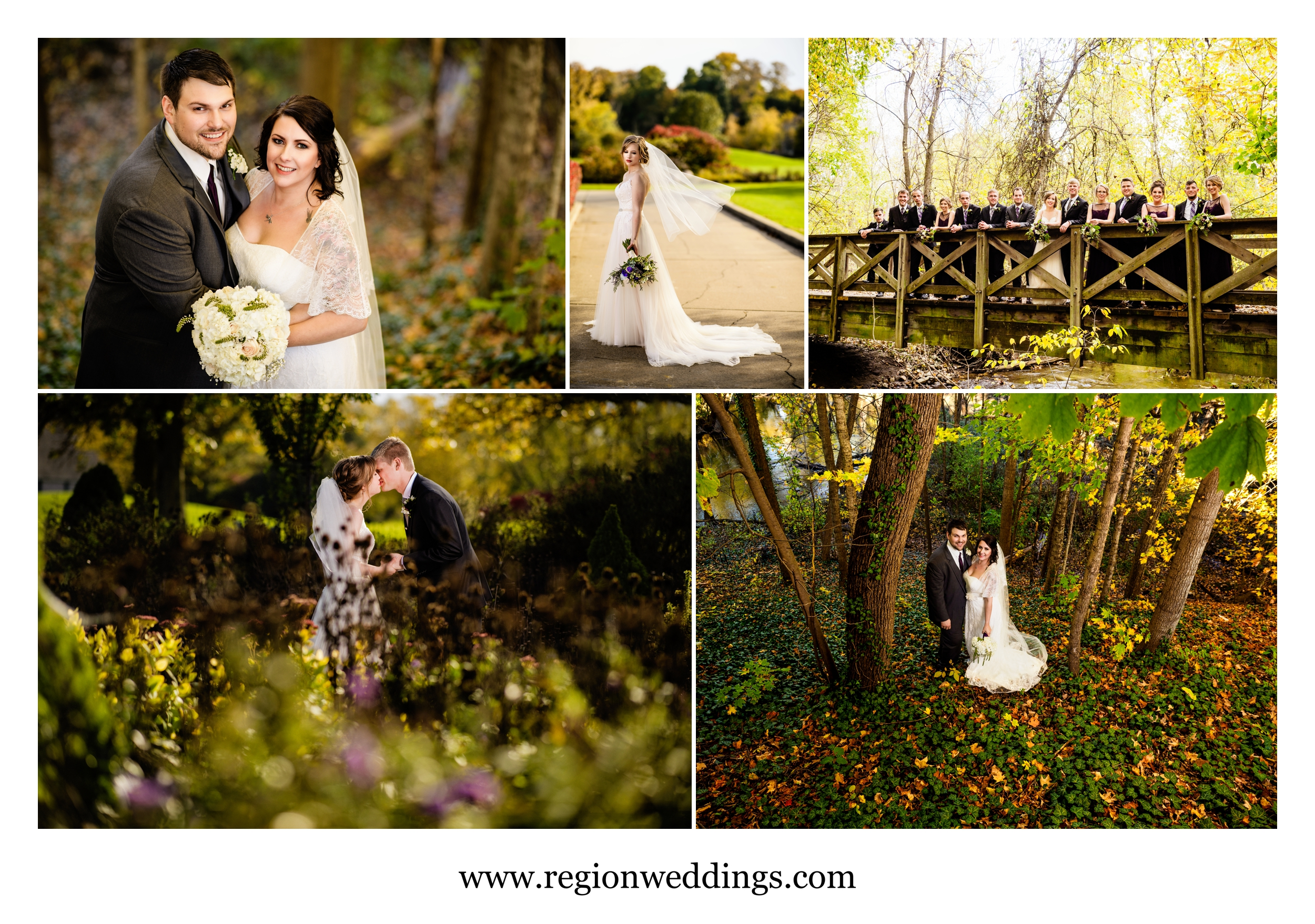 Autumn leaves at wedding venues Sand Creek Country Club and The Spa.