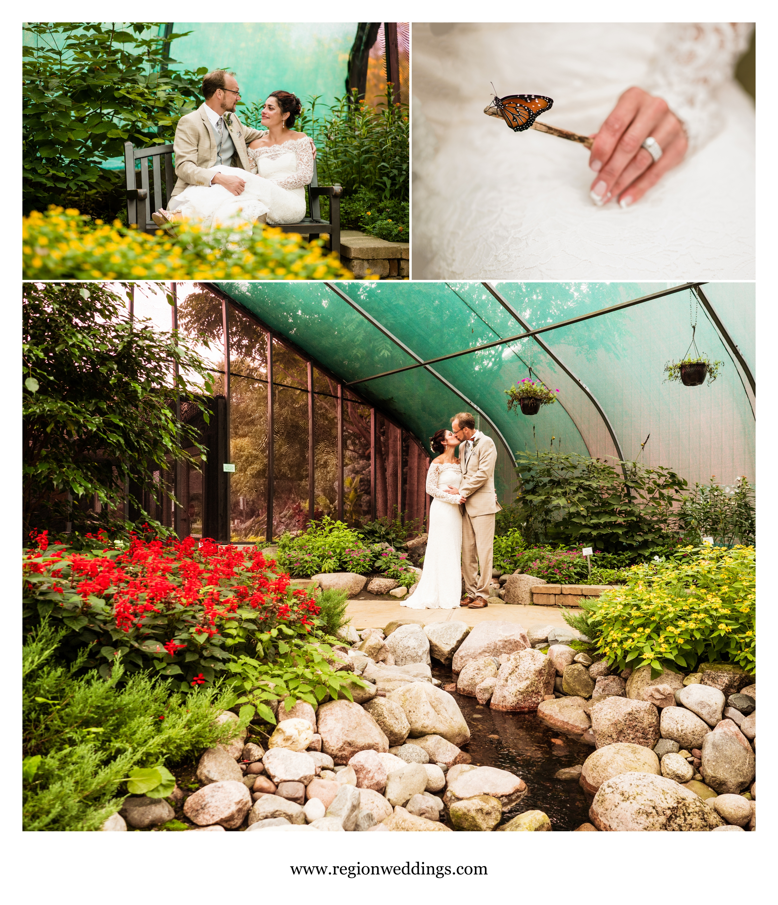 Bride and groom photos inside the butterfly house at Peck Farm Park.