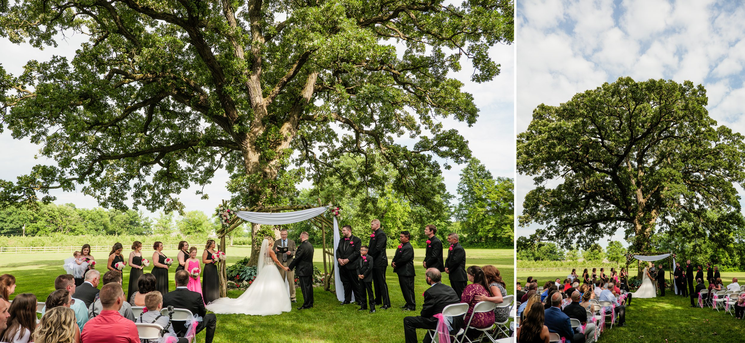 Wedding ceremony underneath the big oak tree at County Line Orchard.