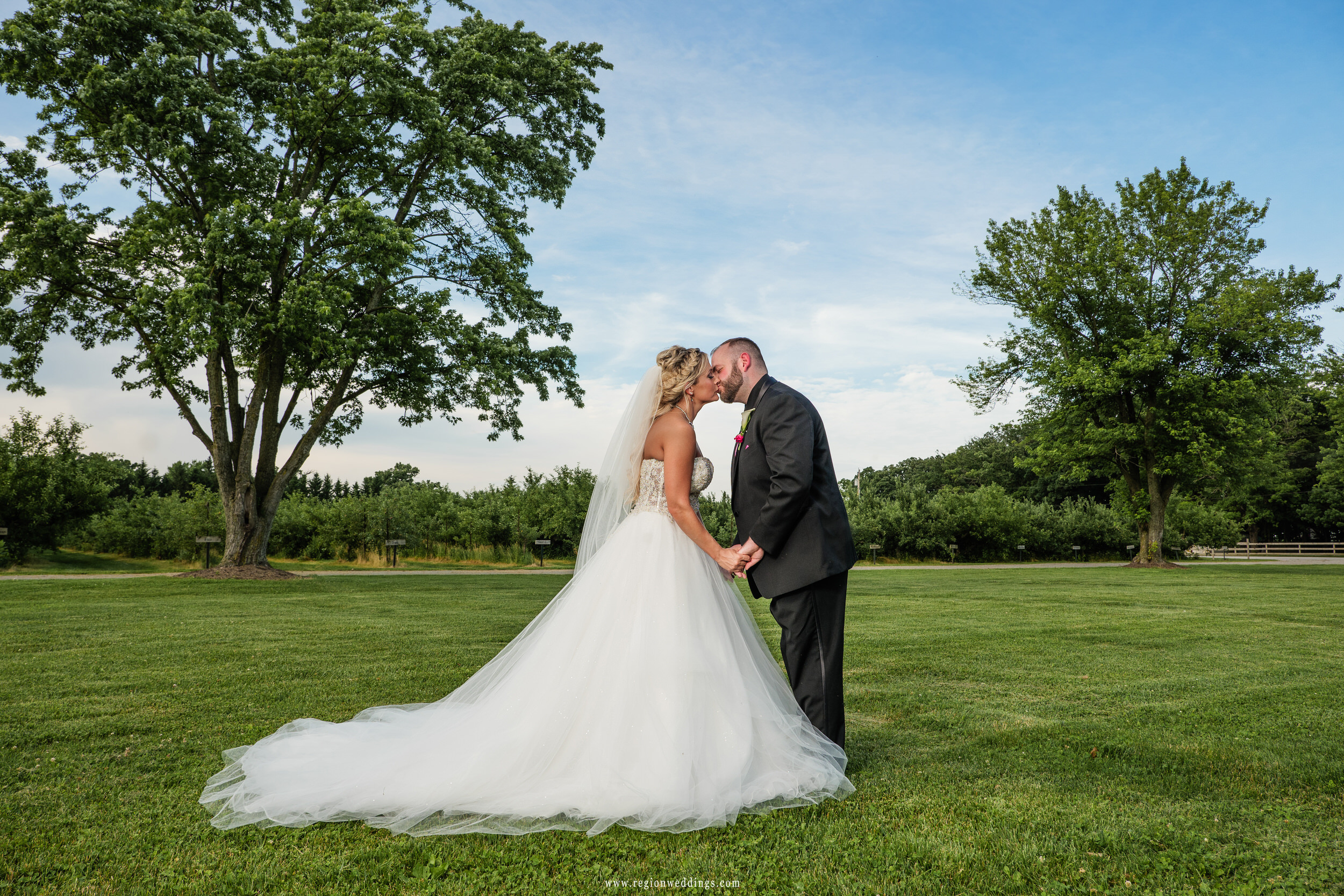 The bride and groom share a kiss between two trees at County Line Orchard.
