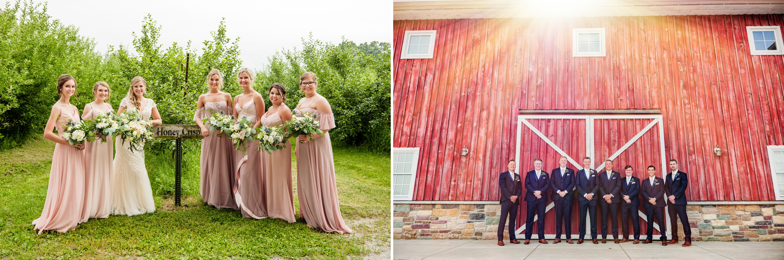 Bridesmaid and groomsmen photos at County Line Orchard.