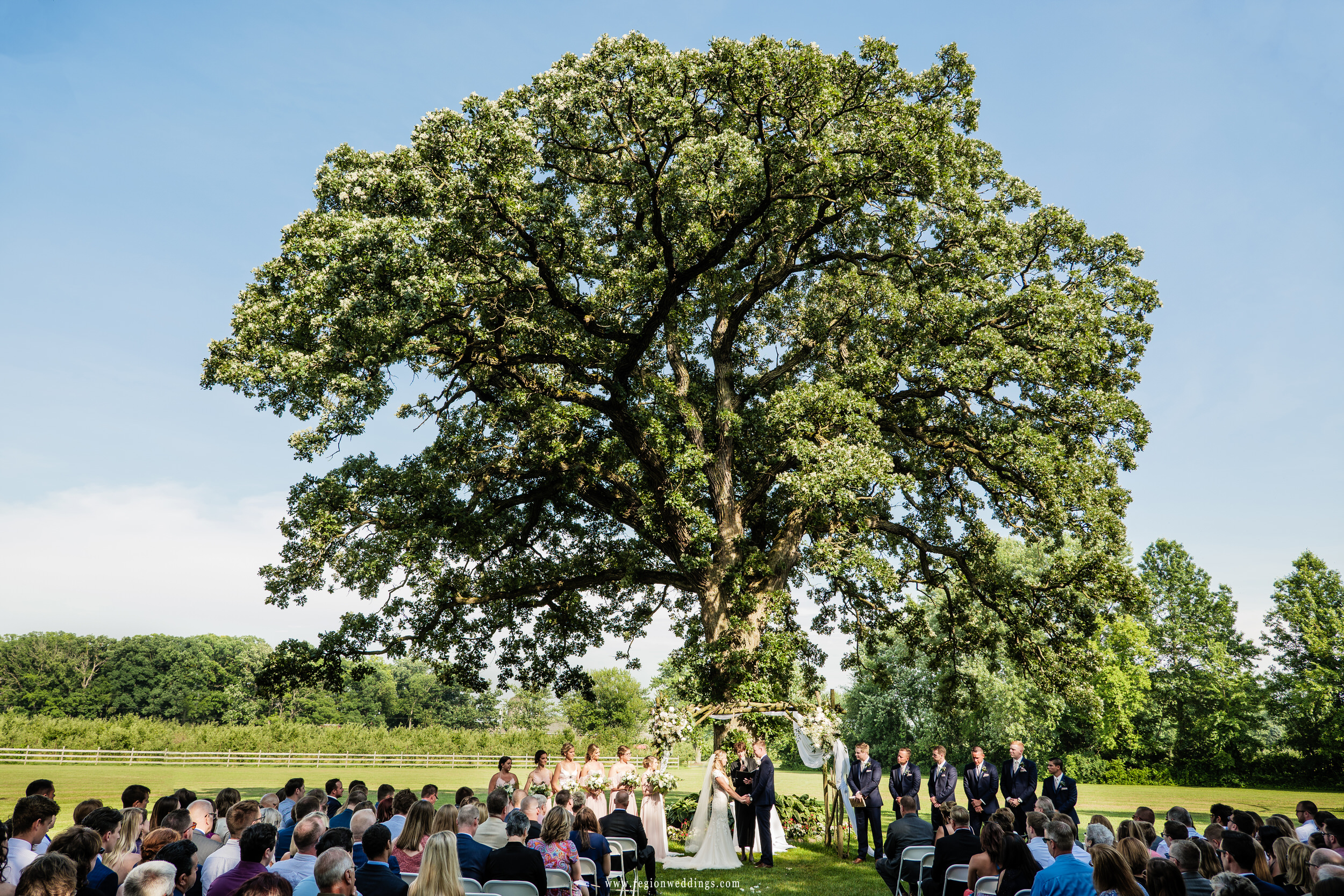 Friends and family watch an outdoor wedding ceremony underneath the big oak tree at County Line Orchard.