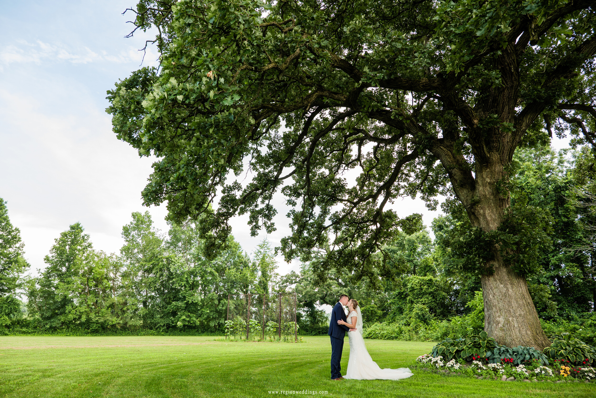 A romantic kiss underneath a giant oak tree.