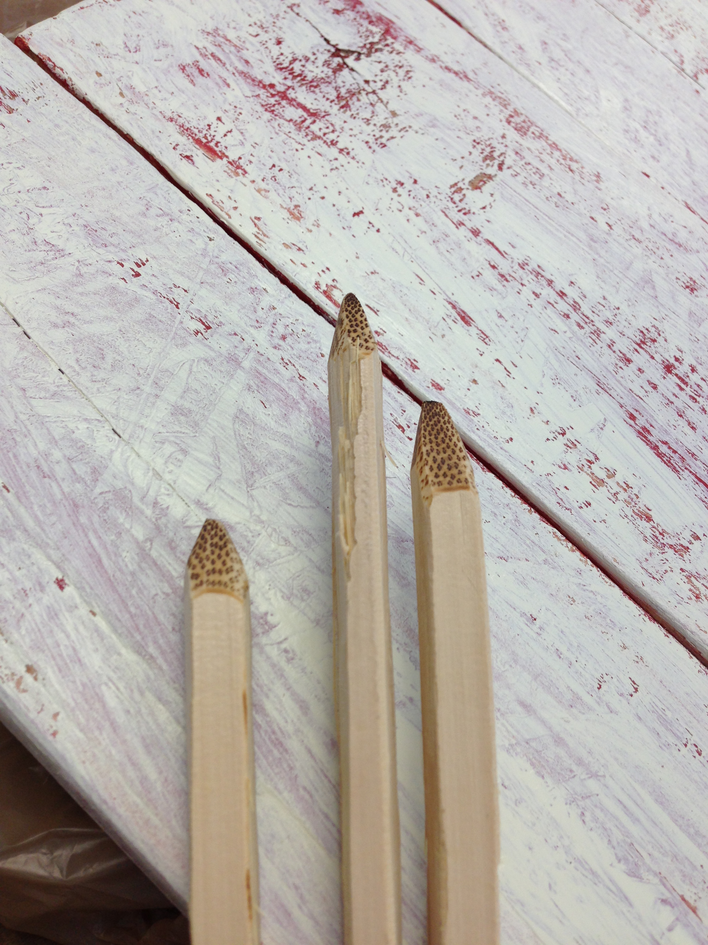 The tips of freshly-made potting chopsticks.