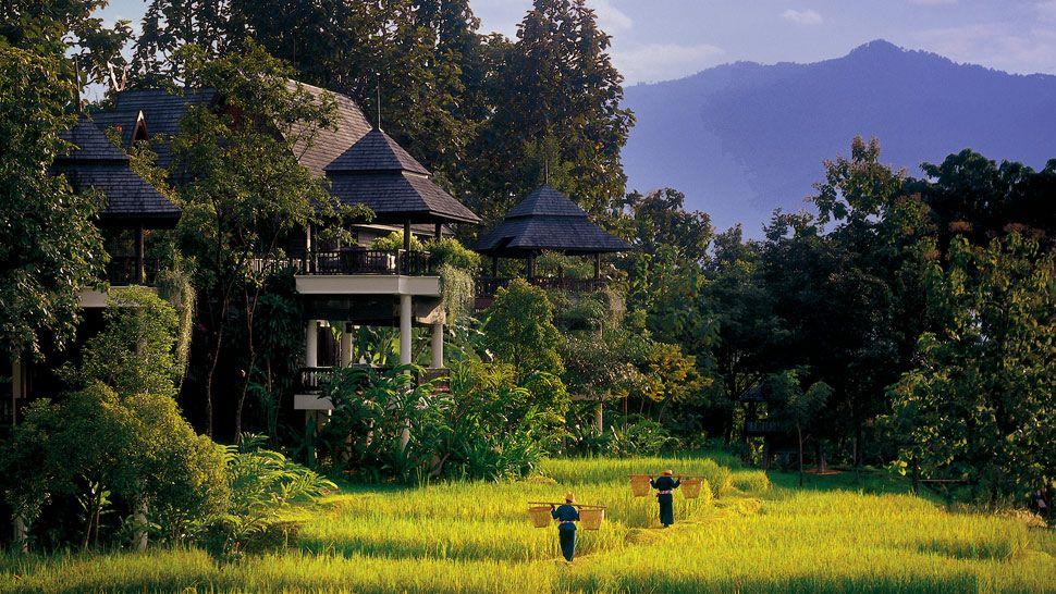003495-02-villa-exteriors-jungle-view.jpg