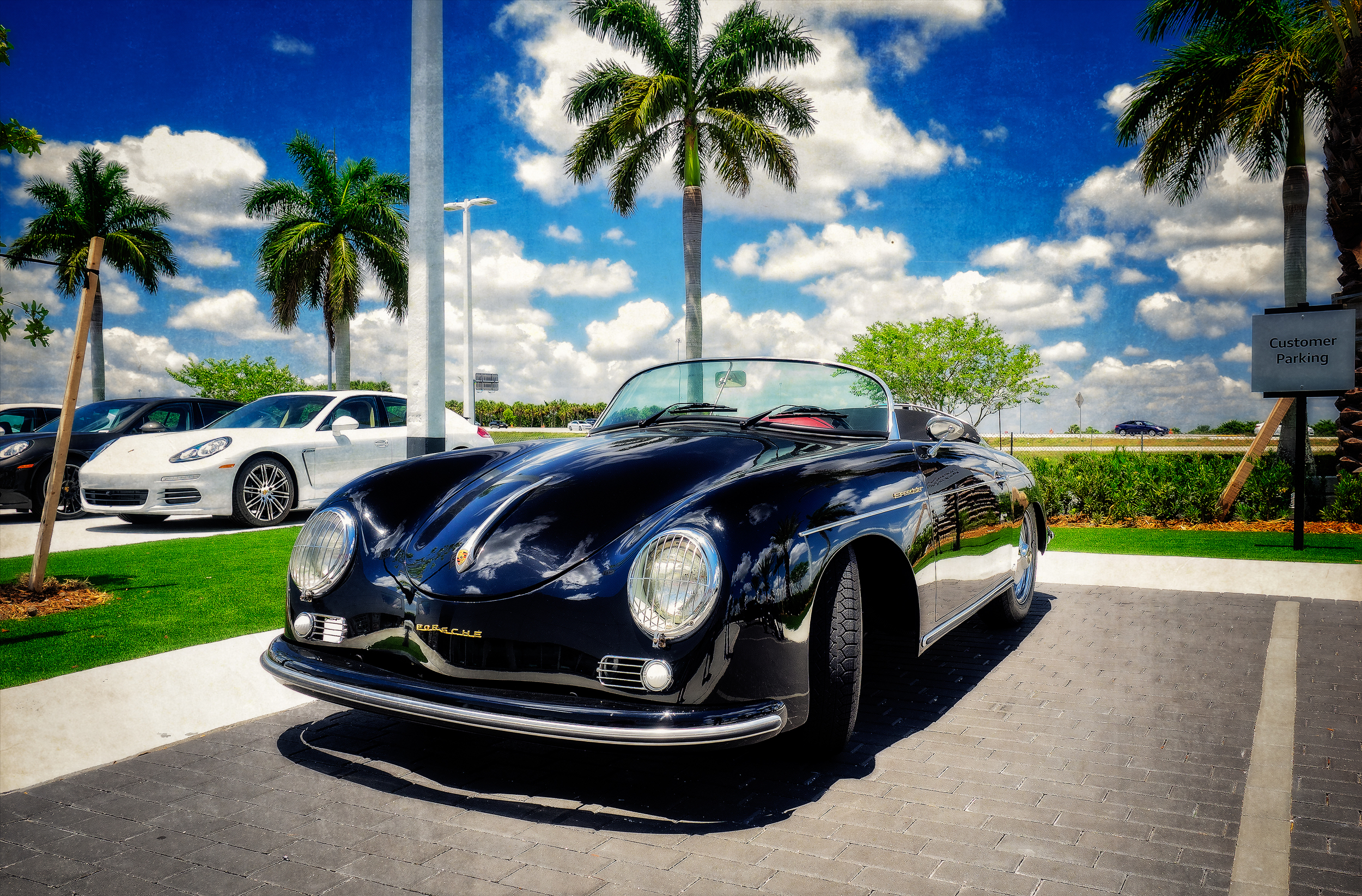 """Speedster in Paradise"""