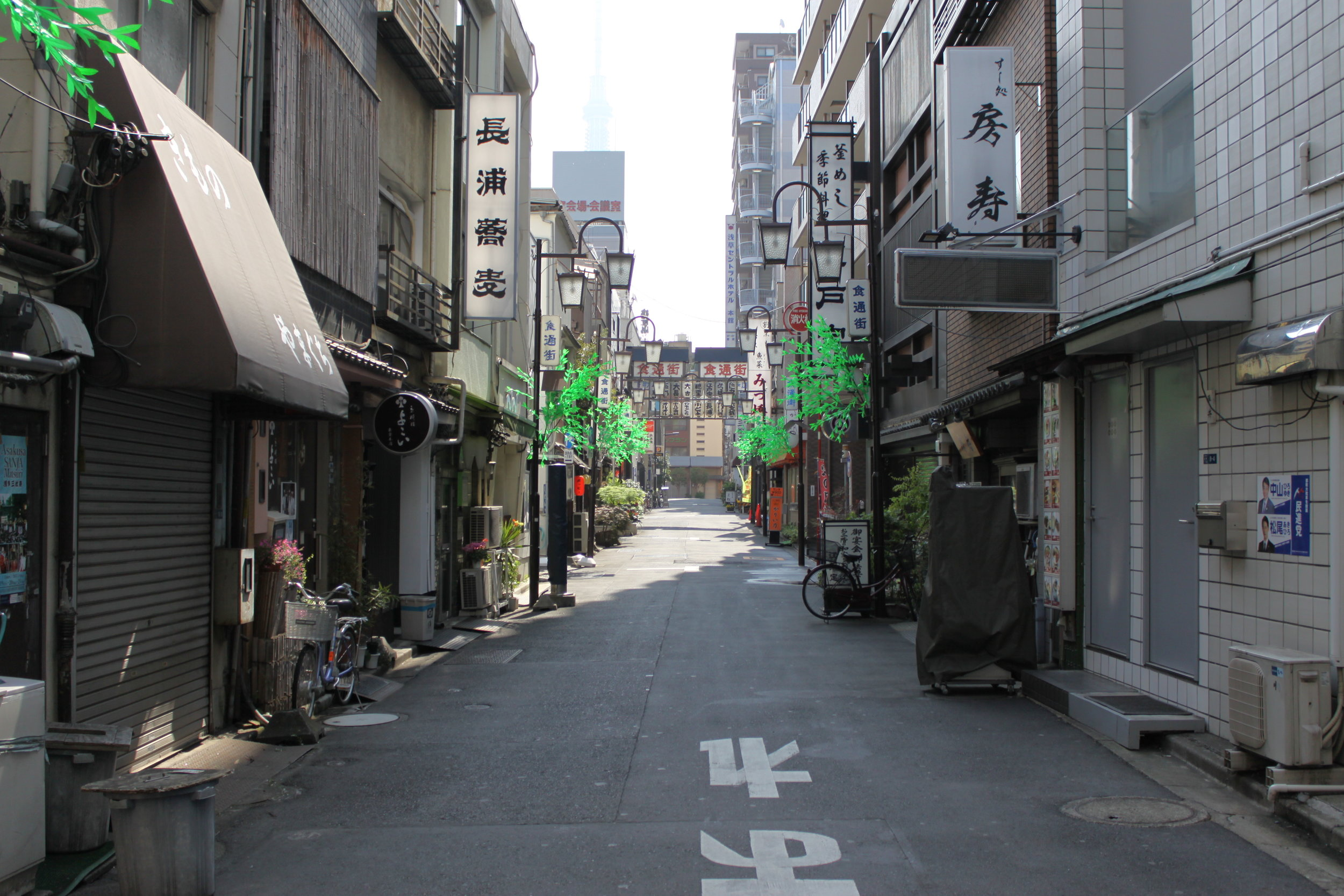 japanselects_001.JPG