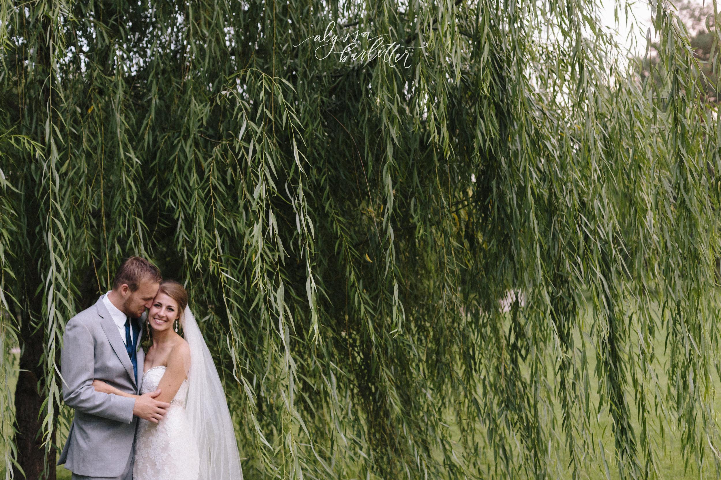 kansas city wedding photographer loose park bride groom bridesmaids groomsmen bridal party portraits