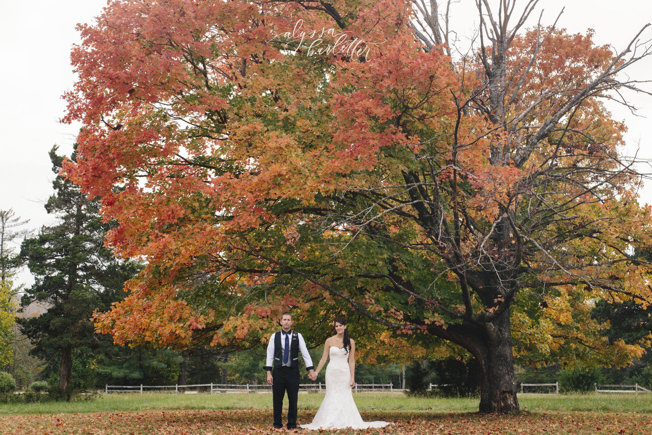 kansas city missouri wedding photographer longview mansion bride groom