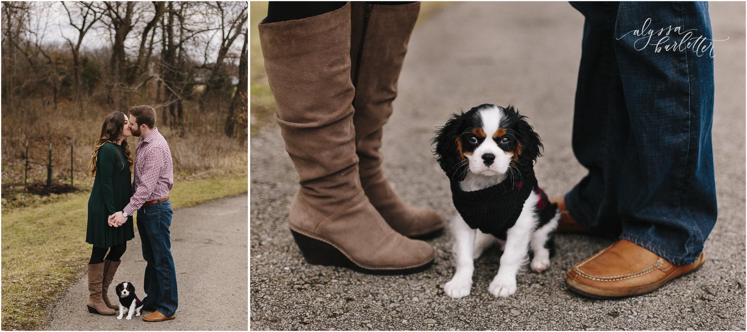 alyssa barletter photography lifestyle apartment new puppy-1-9.jpg