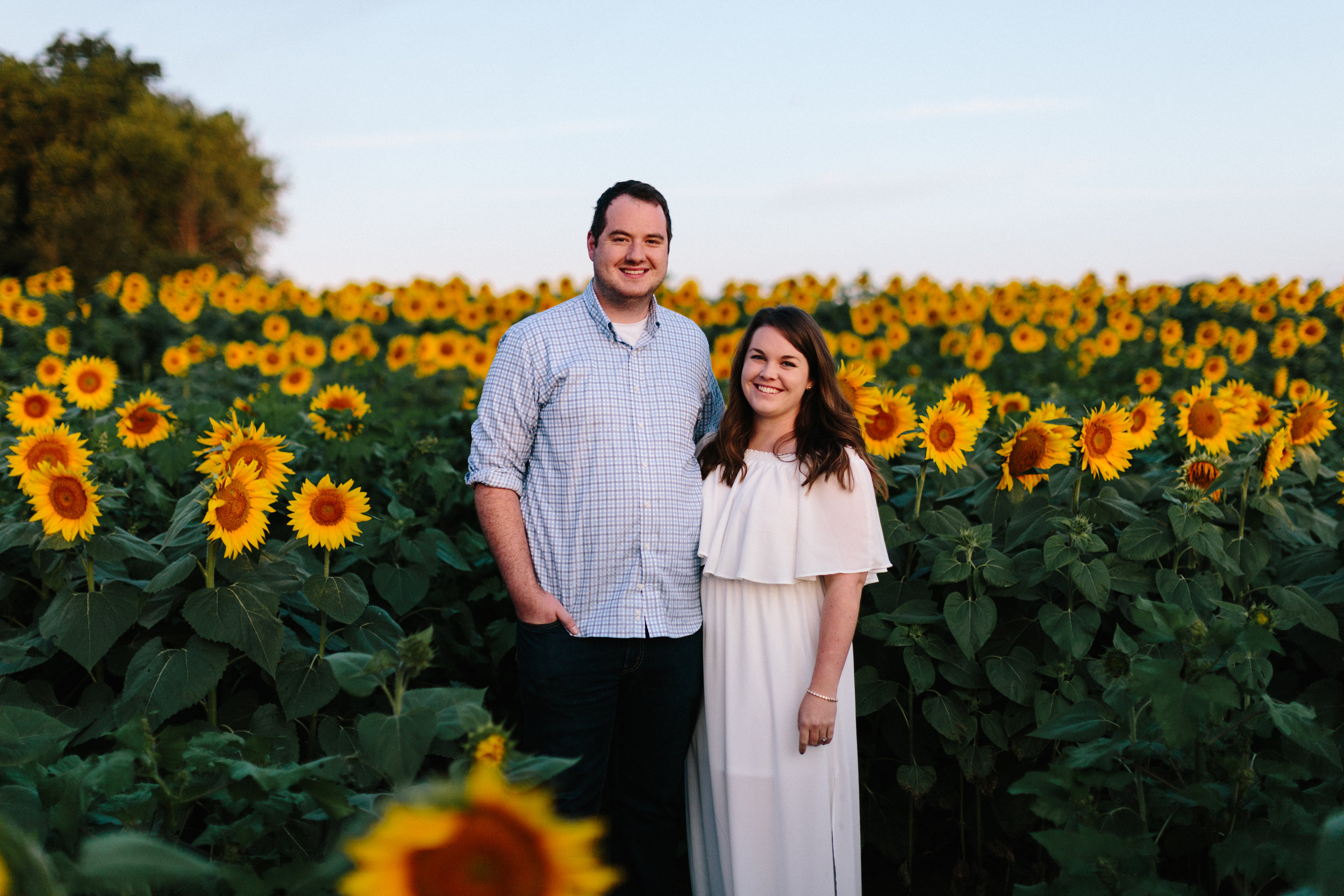 alyssa barletter photography sunflower field photos-1.jpg